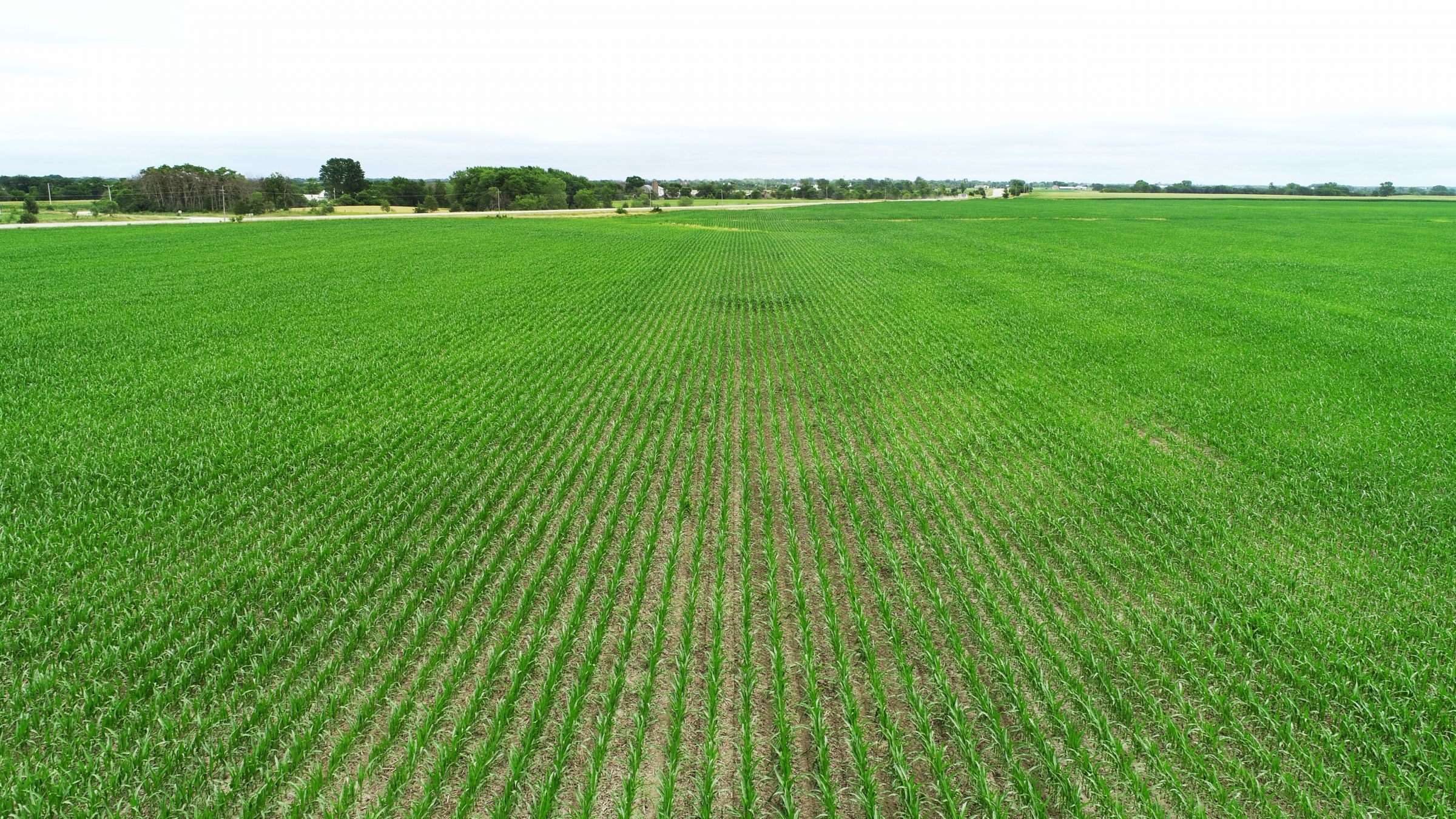 land-davis-county-iowa-1042-acres-listing-number-15349-7-2021-02-03-212244.jpg