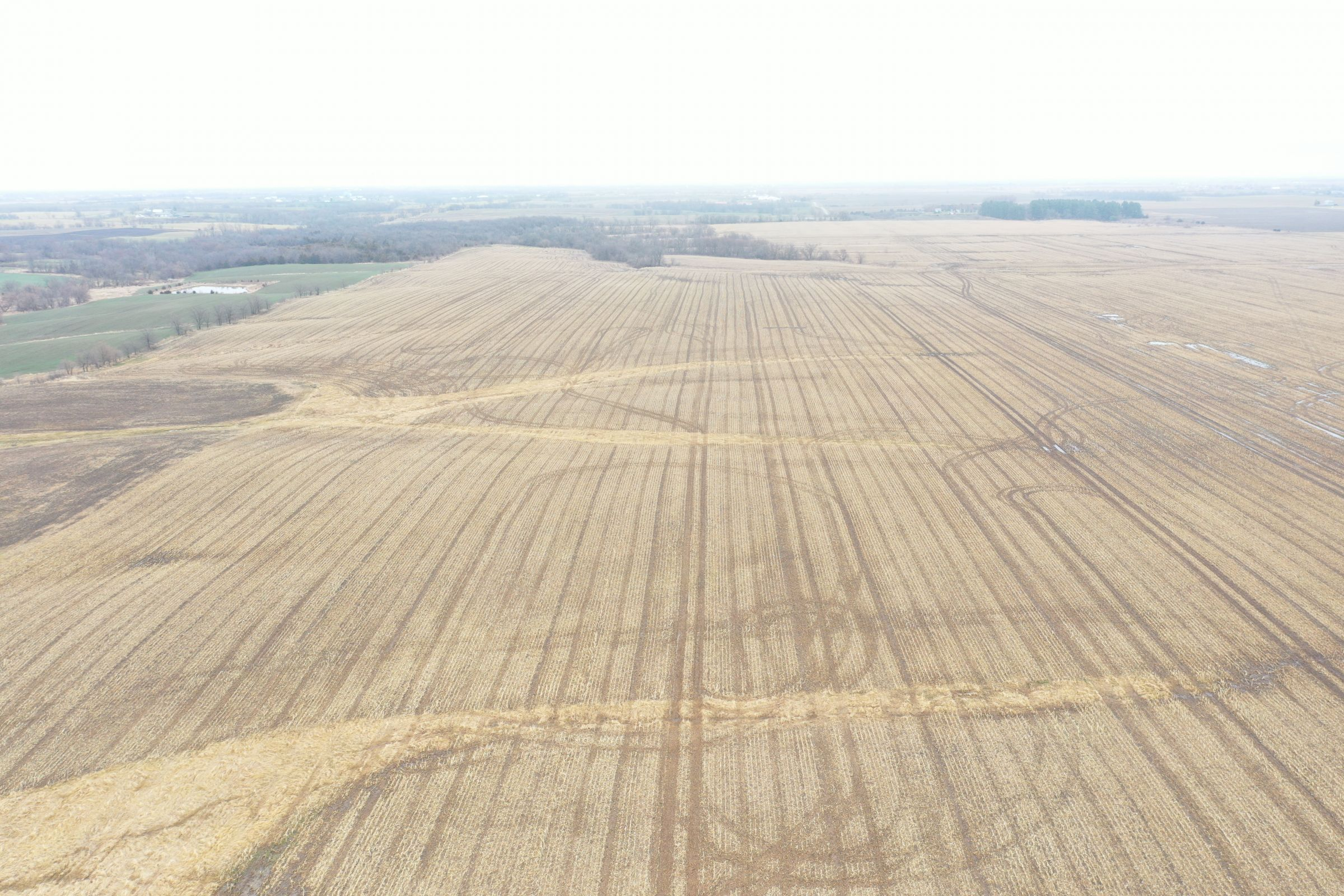 land-davis-county-iowa-180-acres-listing-number-15360-1-2021-03-19-143910.JPG