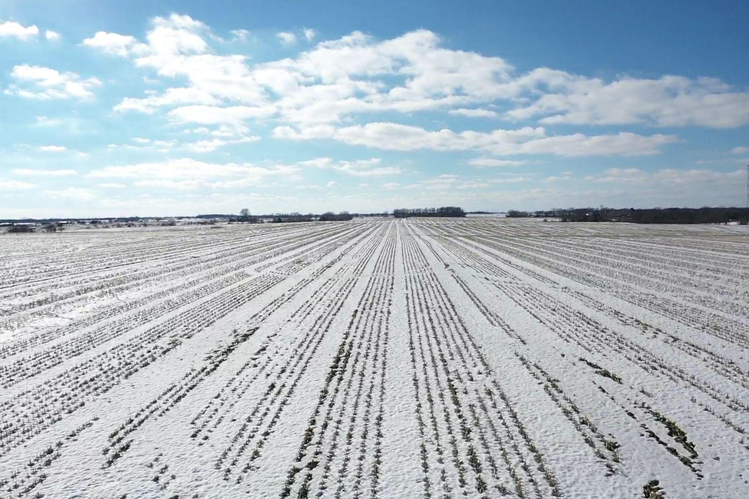 land-davis-county-iowa-180-acres-listing-number-15360-2-2021-02-25-170005.jpg