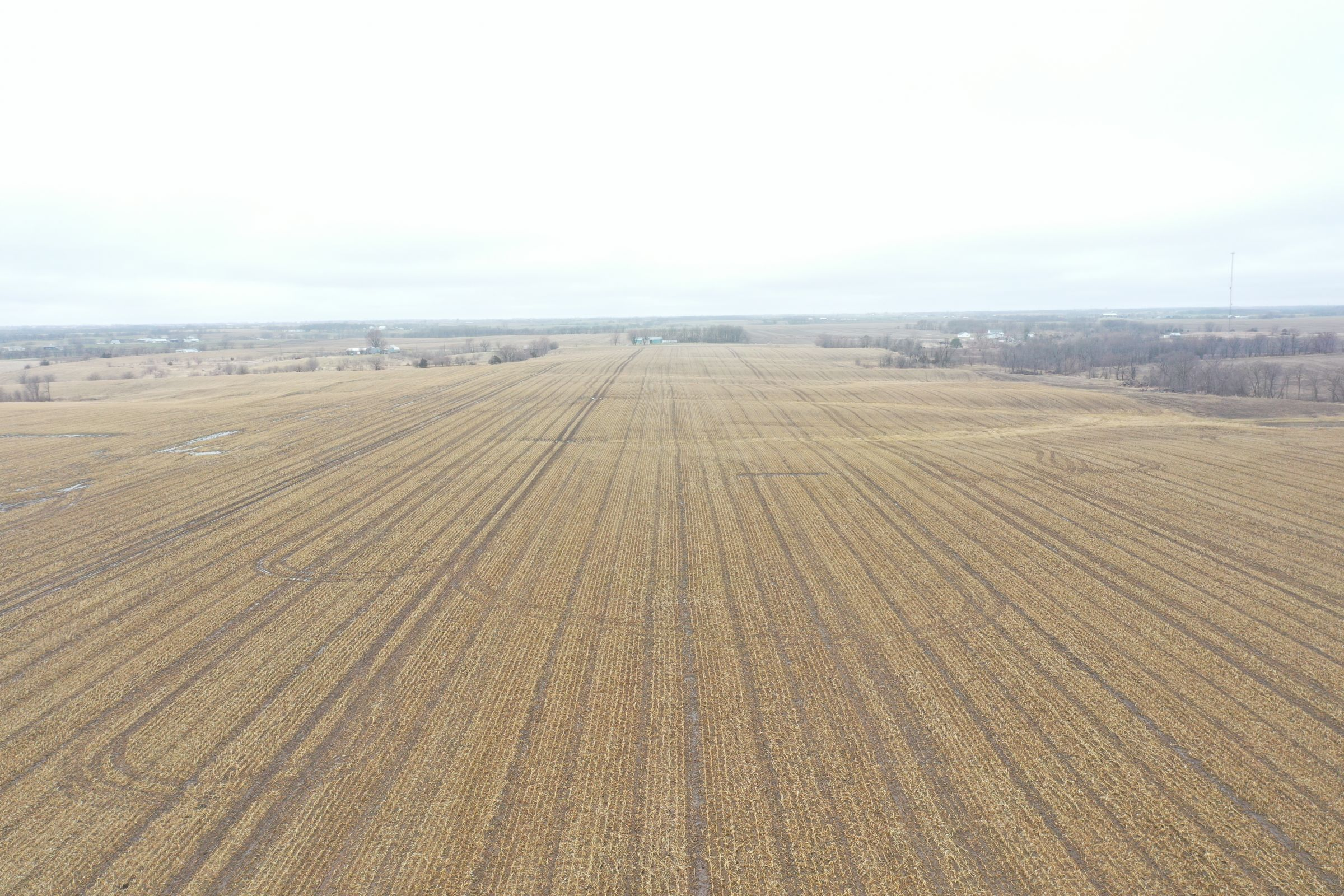 land-davis-county-iowa-180-acres-listing-number-15360-2-2021-03-19-143912.JPG