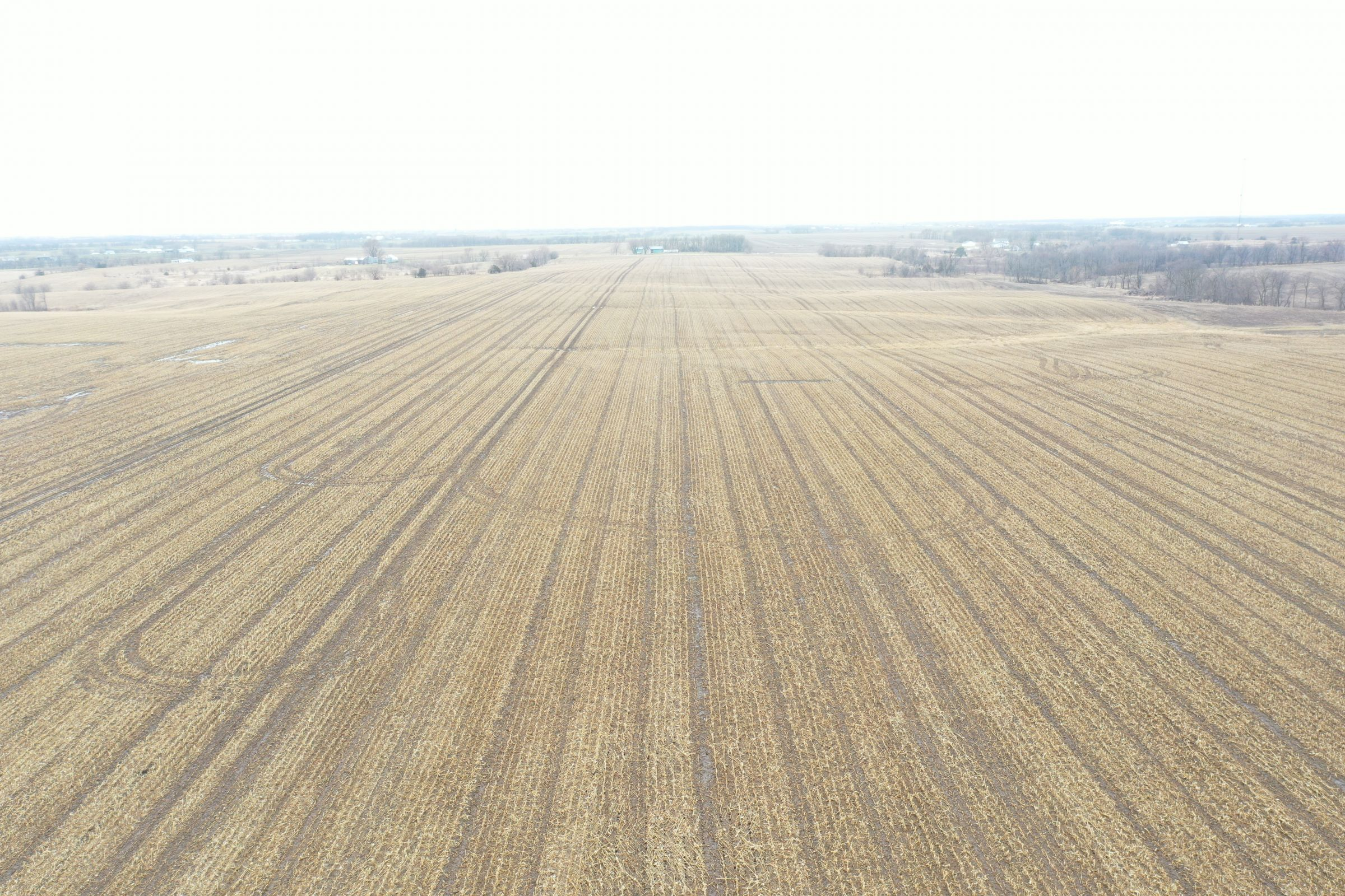 land-davis-county-iowa-180-acres-listing-number-15360-3-2021-03-19-143914.JPG