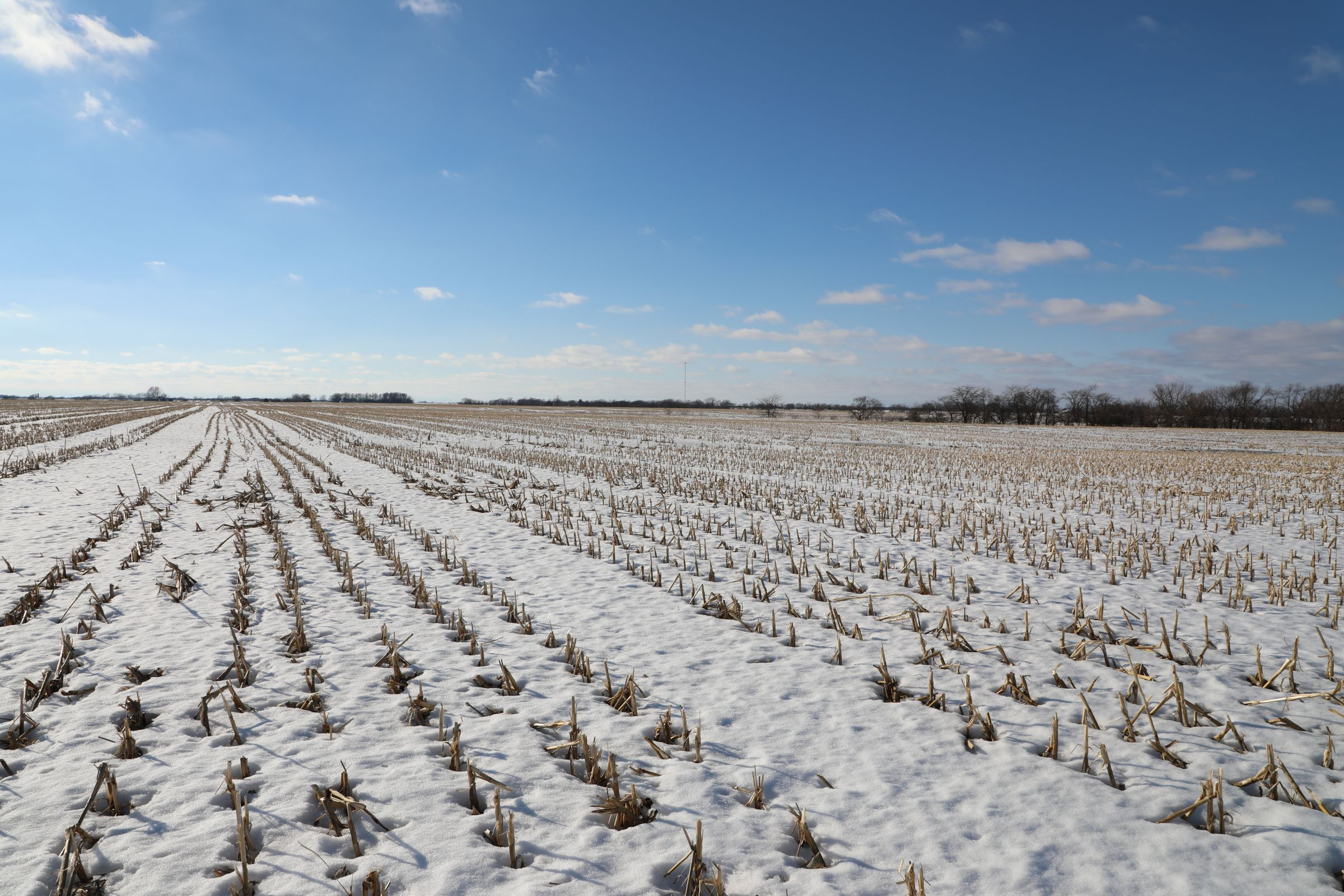 land-davis-county-iowa-180-acres-listing-number-15360-4-2021-02-25-173843.JPG