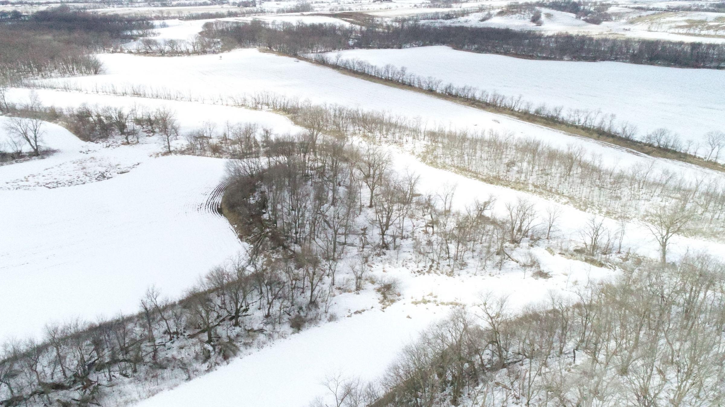 land-madison-county-iowa-117-acres-listing-number-15371-3-2021-02-24-191552.JPG
