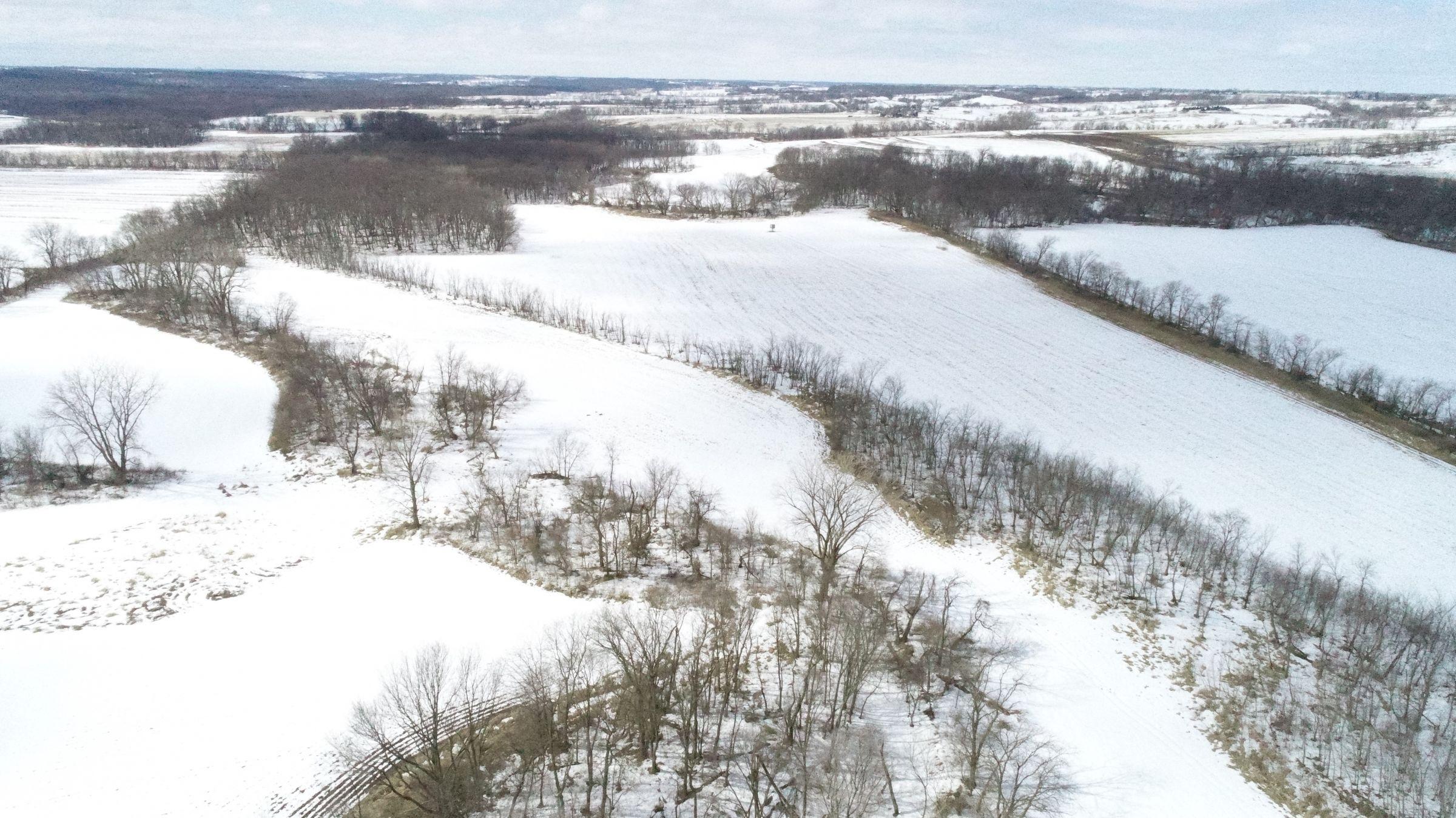 land-madison-county-iowa-117-acres-listing-number-15371-4-2021-02-24-191553.JPG