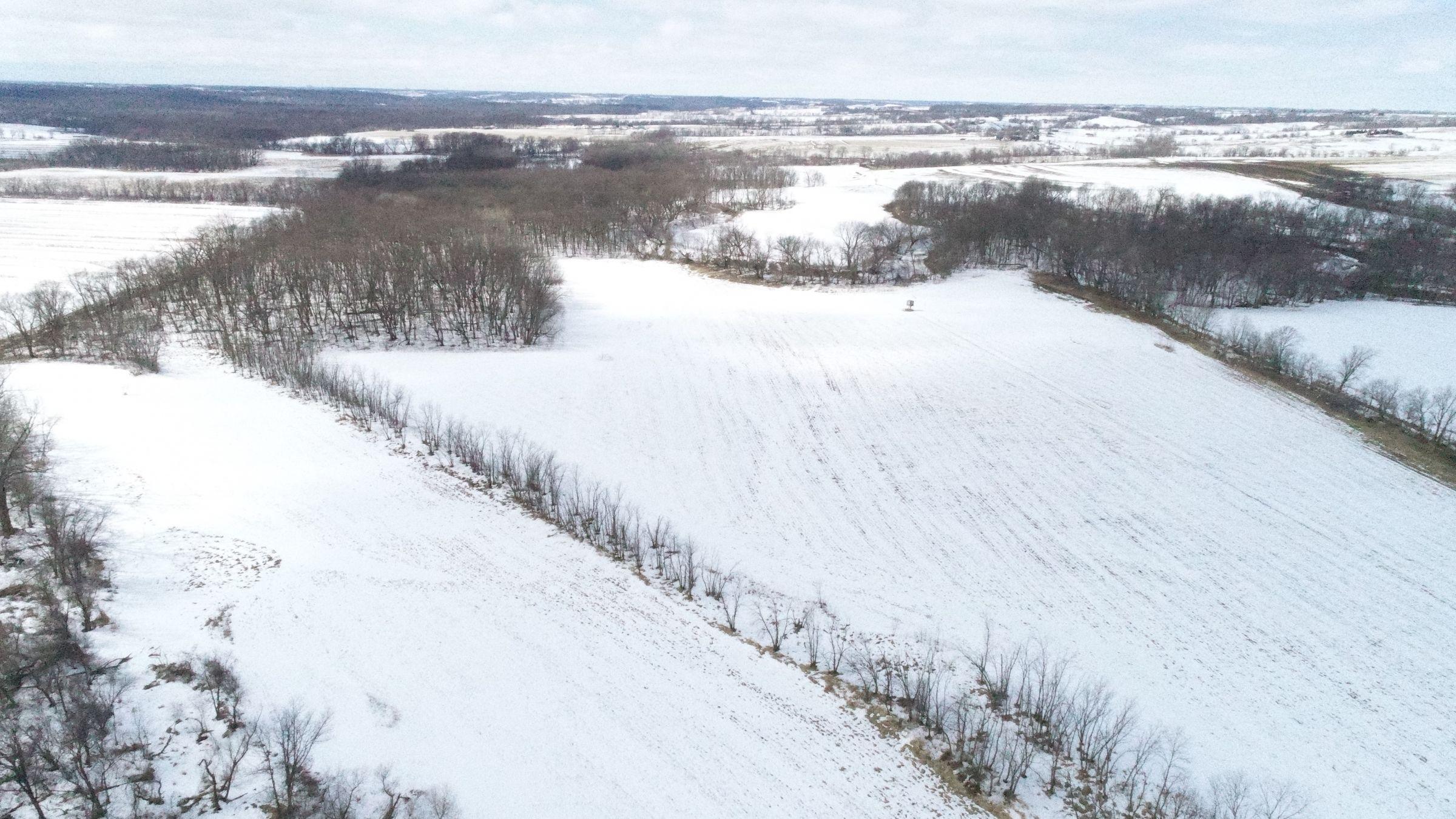 land-madison-county-iowa-117-acres-listing-number-15371-5-2021-02-24-191554.JPG