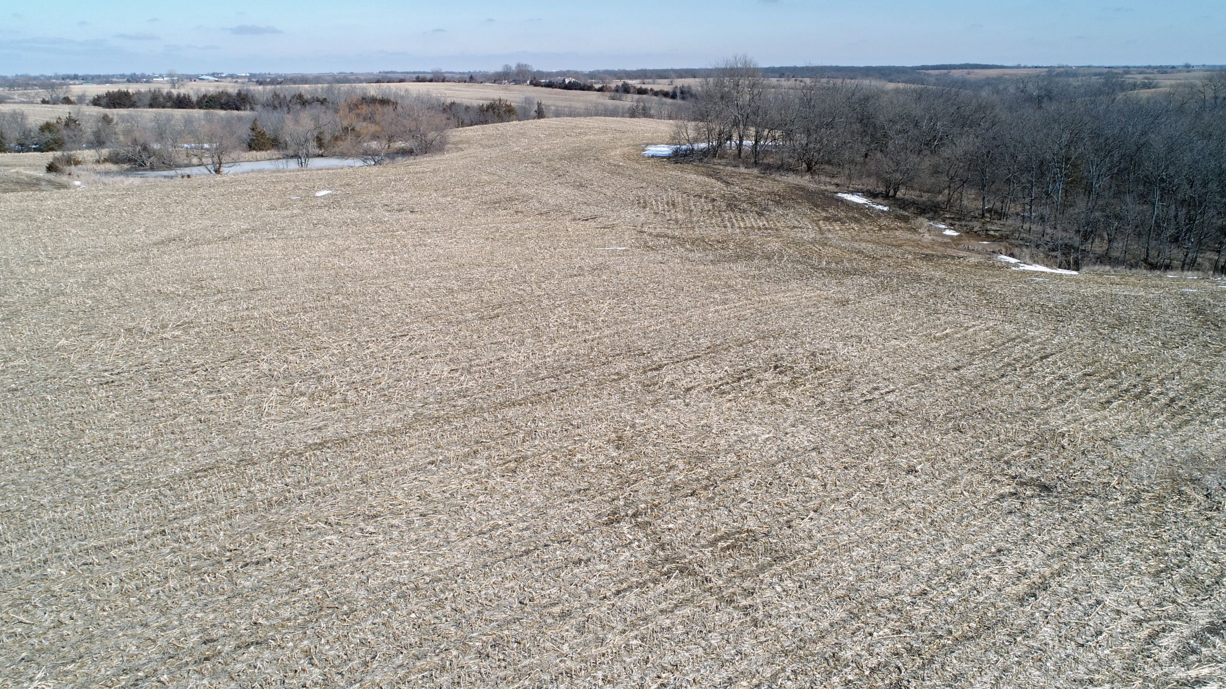 land-lucas-county-iowa-194-acres-listing-number-15385-6-2021-03-02-182634.jpg