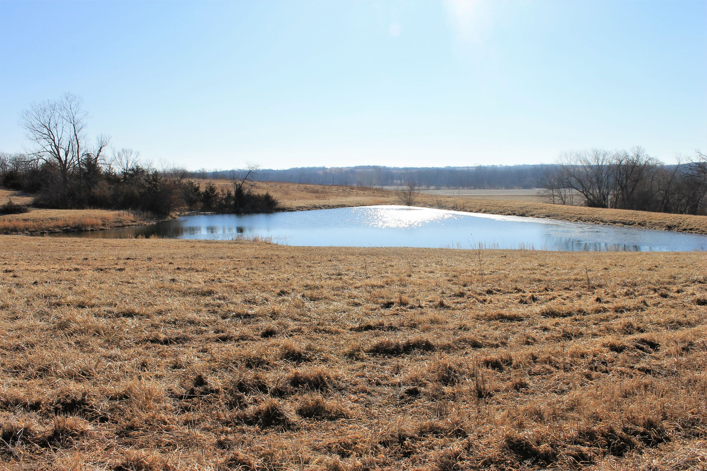 land-gentry-county-missouri-40-acres-listing-number-15397-0-2021-03-09-163946.jpg