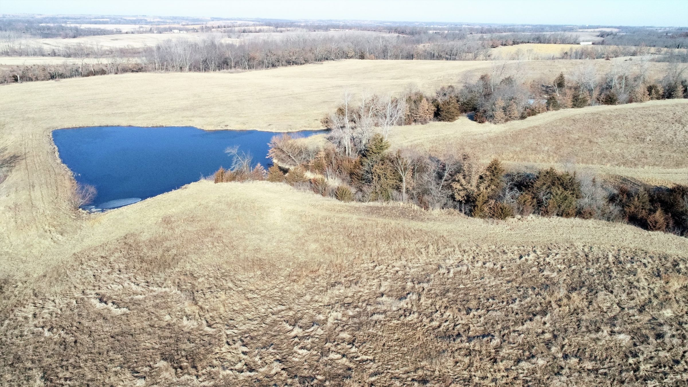 land-gentry-county-missouri-40-acres-listing-number-15397-3-2021-03-09-163950.jpg