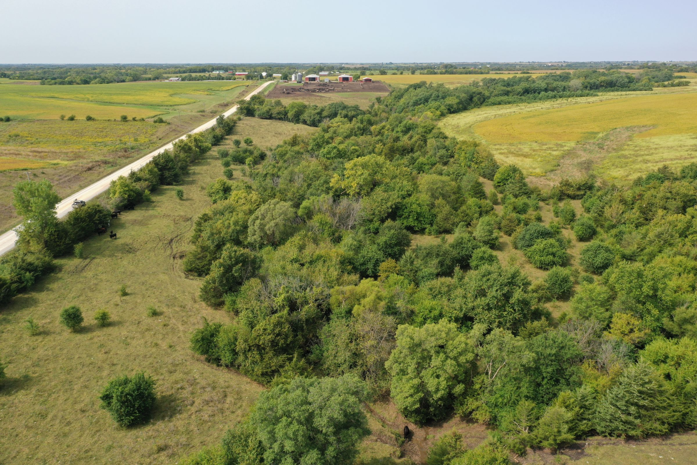 clarke-county-iowa-37-acres-listing-number-15398-0-2021-03-08-151149.jpg