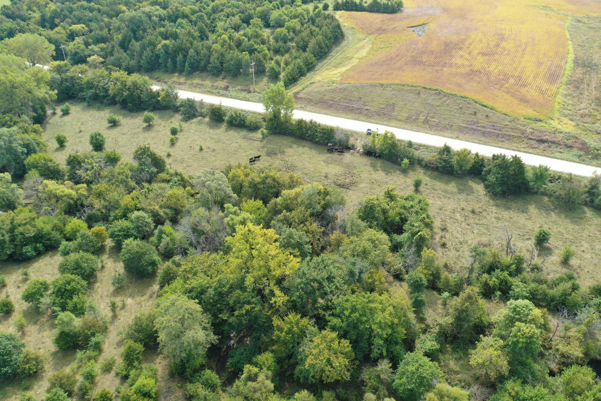 clarke-county-iowa-37-acres-listing-number-15398-2-2021-03-08-151152.jpg