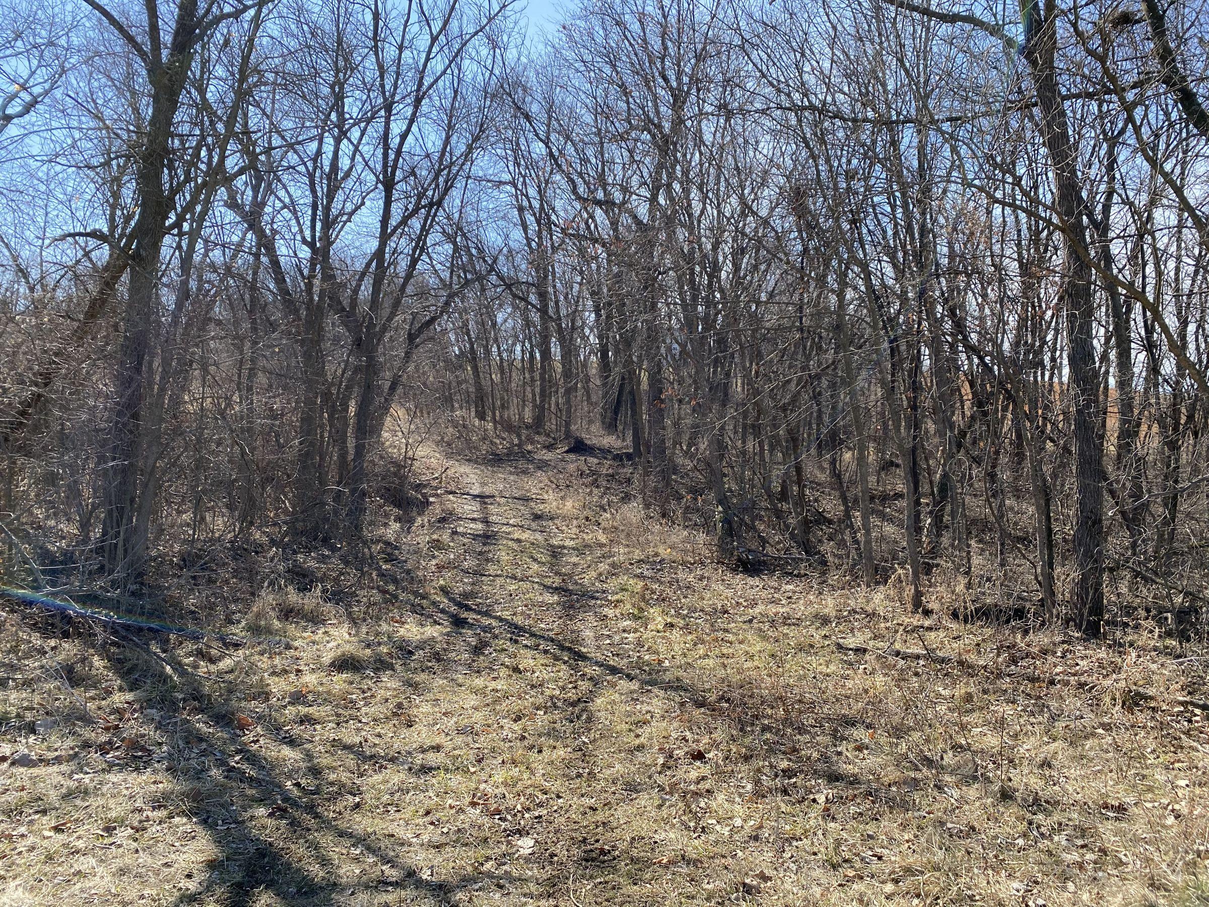land-warren-county-iowa-112-acres-listing-number-15404-2-2021-03-12-151133.jpg
