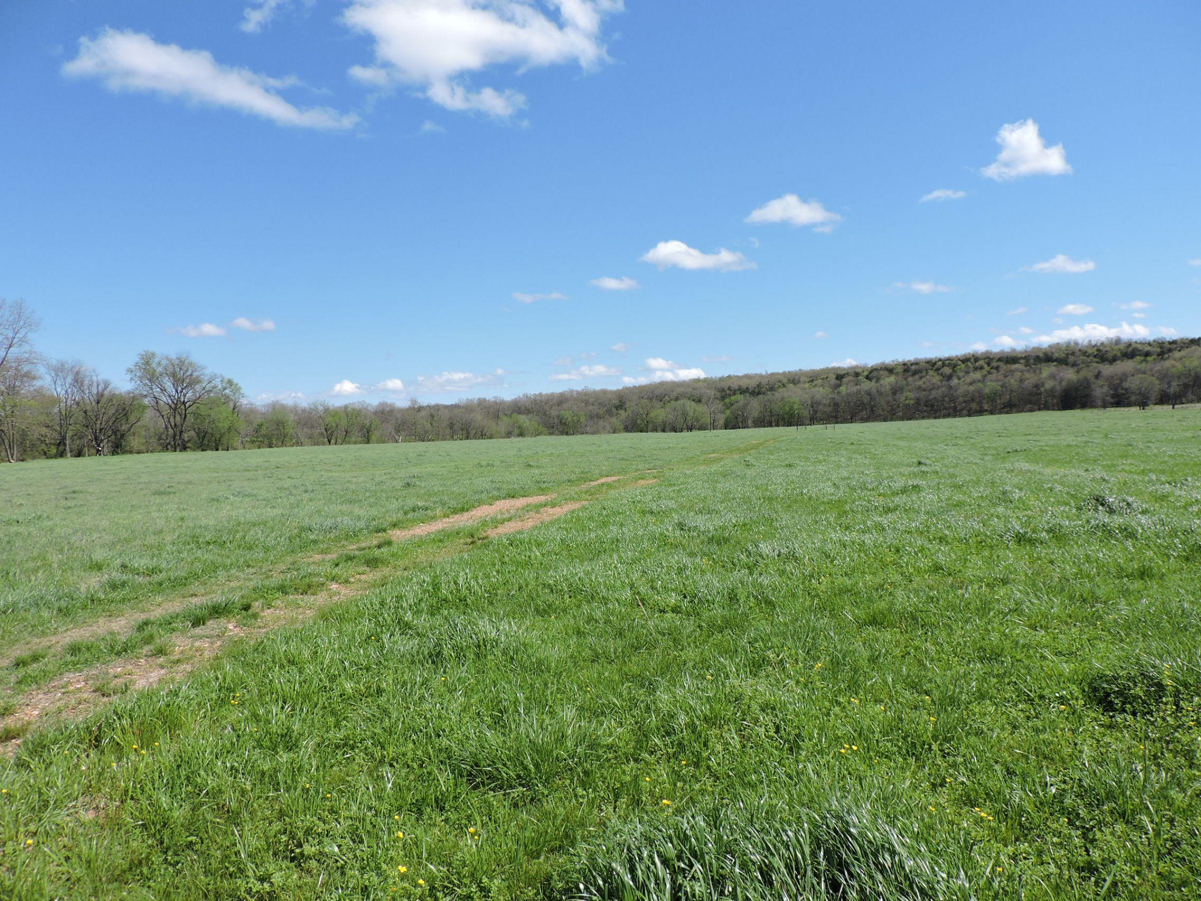 land-sharp-county-arkansas-695-acres-listing-number-15405-10-2021-04-13-213612.JPG