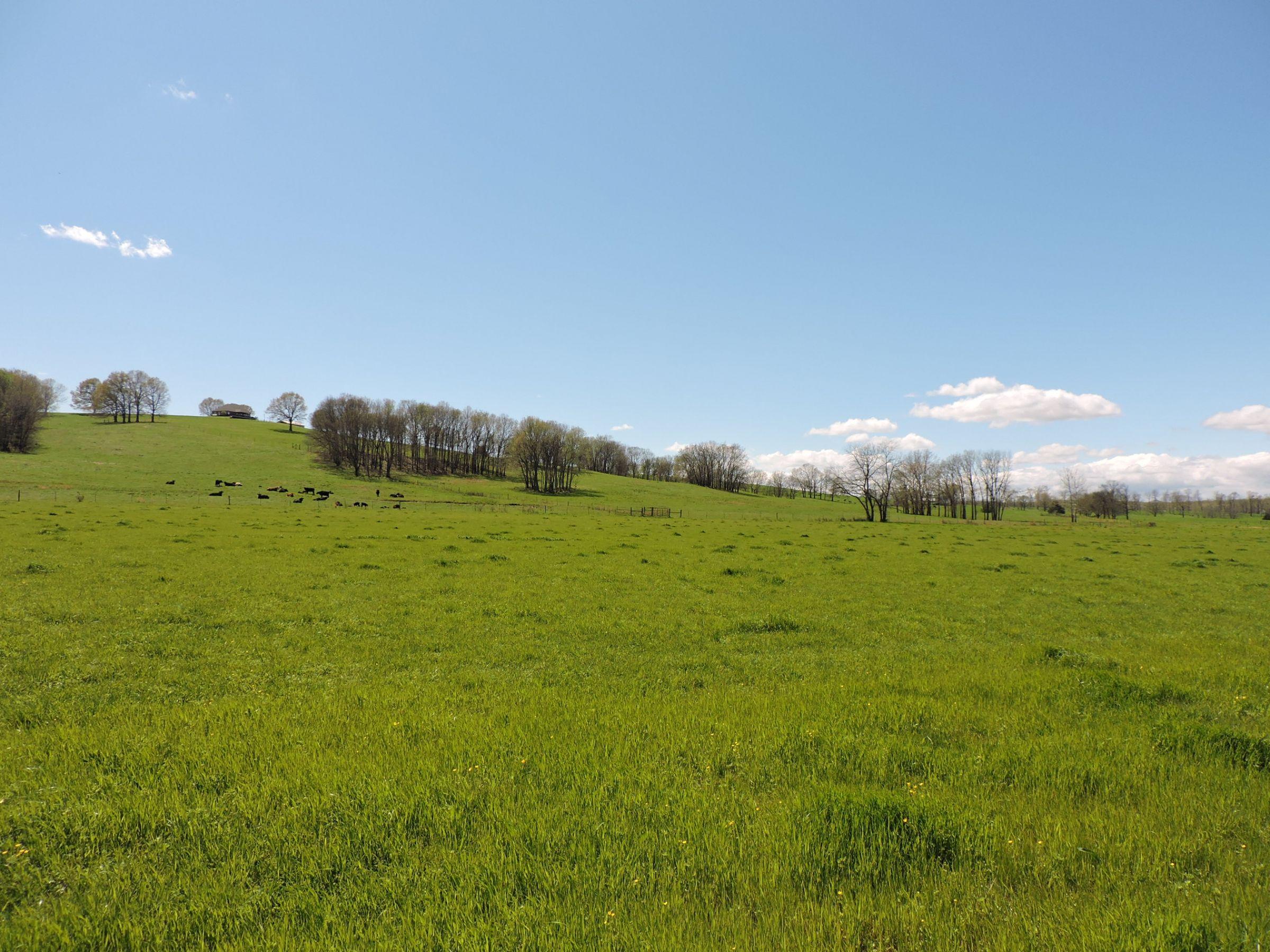 land-sharp-county-arkansas-695-acres-listing-number-15405-13-2021-04-13-213614.JPG