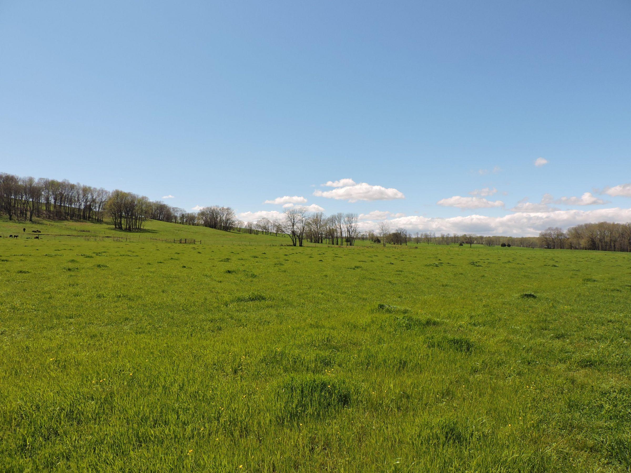 land-sharp-county-arkansas-695-acres-listing-number-15405-14-2021-04-13-213615.JPG