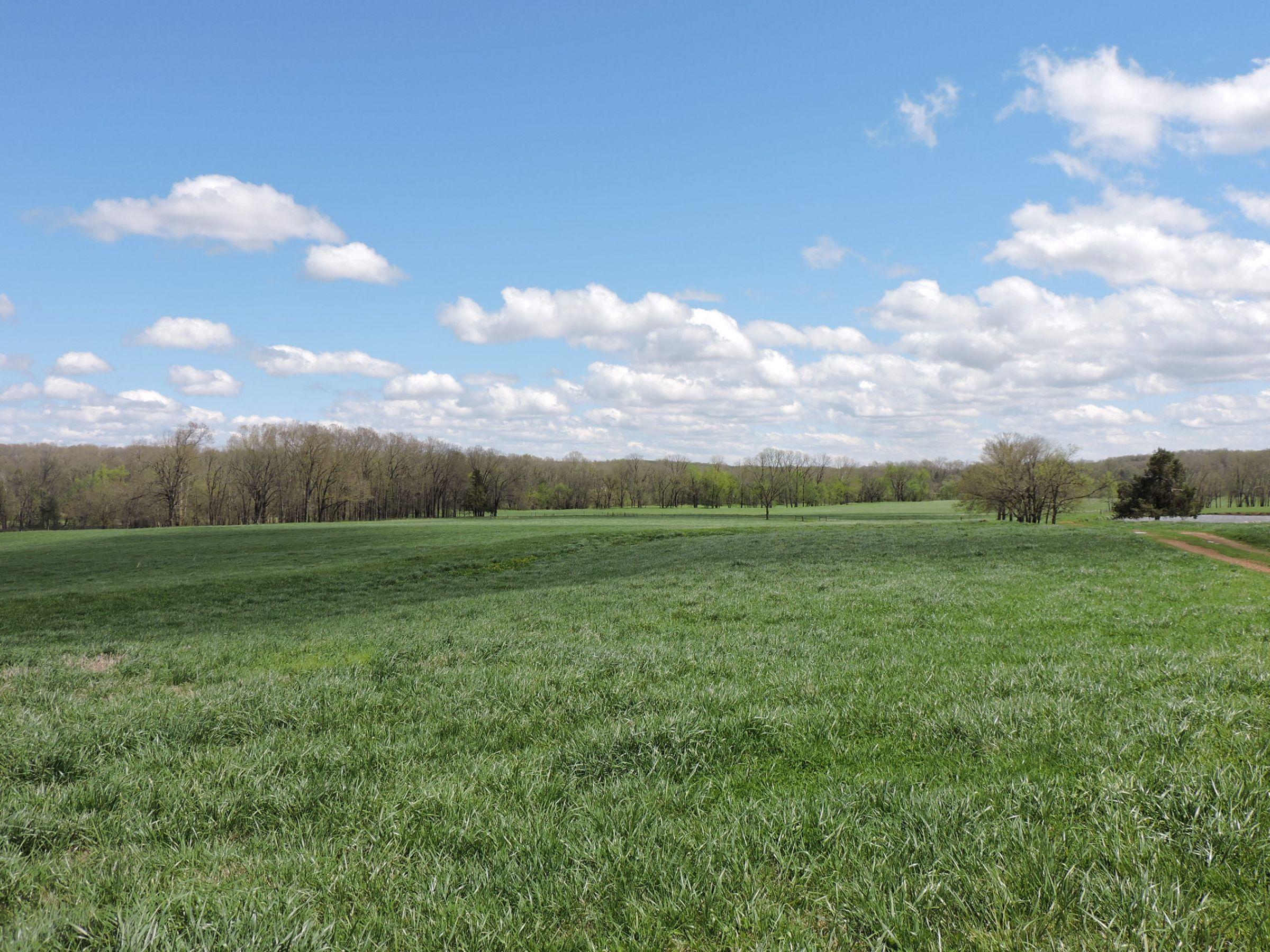 land-sharp-county-arkansas-695-acres-listing-number-15405-2-2021-04-13-213606.JPG