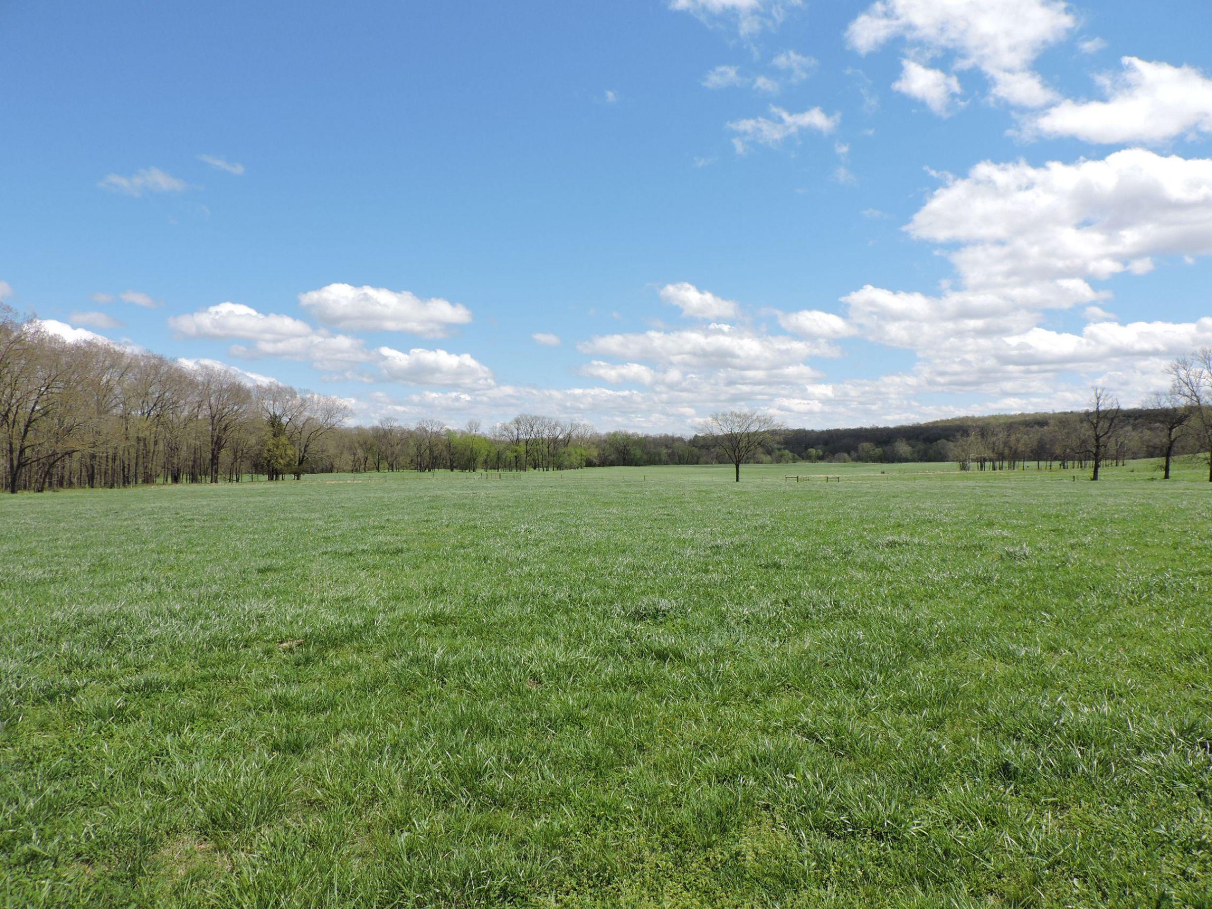 land-sharp-county-arkansas-695-acres-listing-number-15405-3-2021-04-13-213607.JPG