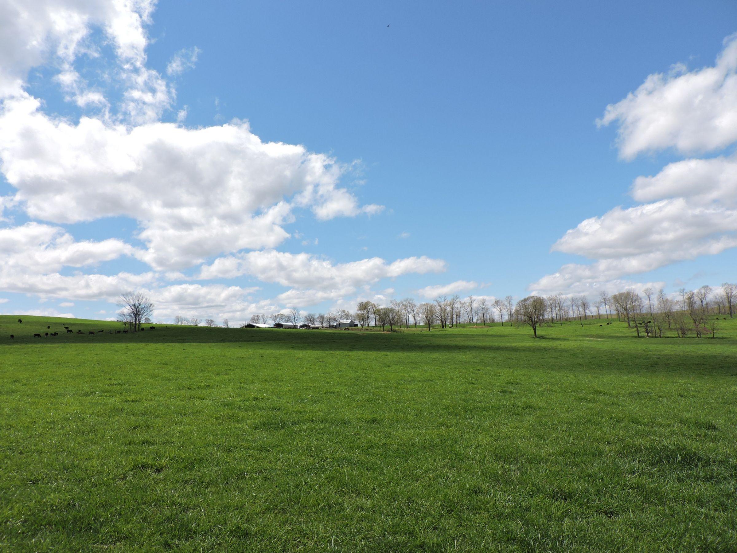 land-sharp-county-arkansas-695-acres-listing-number-15405-6-2021-04-13-213609.JPG