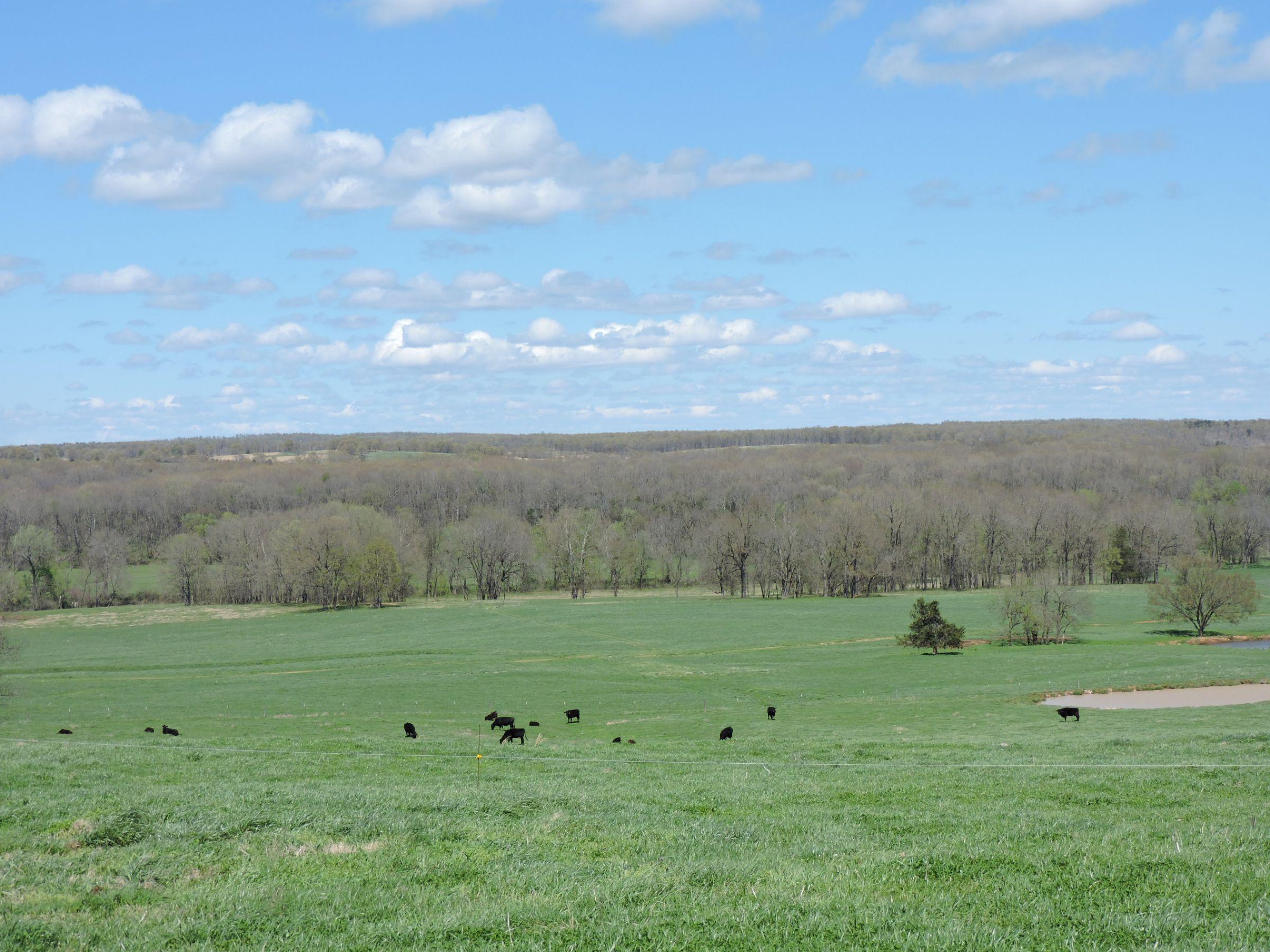 land-sharp-county-arkansas-695-acres-listing-number-15405-8-2021-04-13-213610.JPG