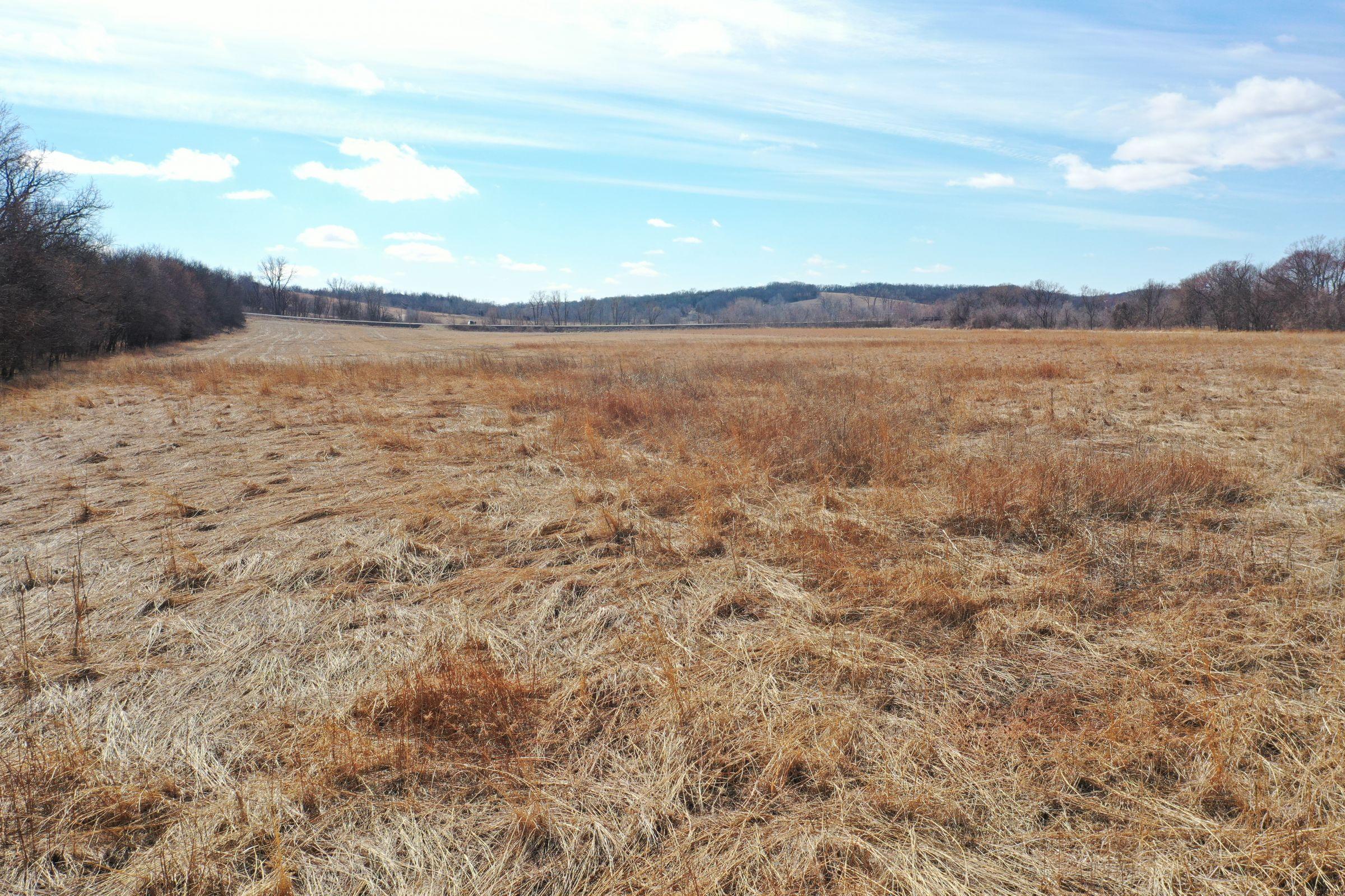 warren-county-iowa-0-acres-listing-number-15407-4-2021-03-11-230532.JPG