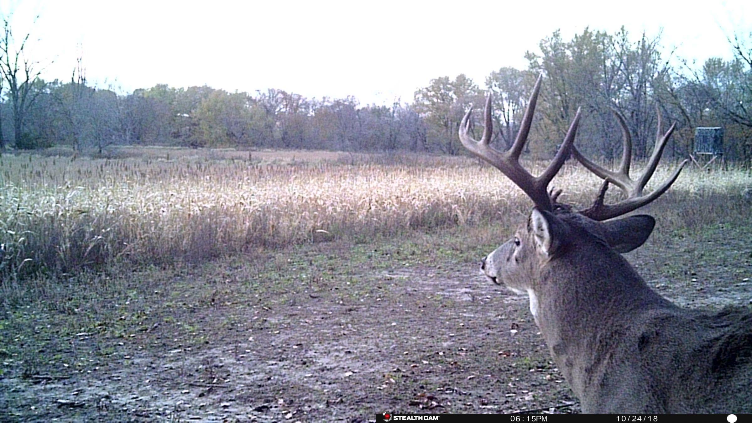land-clarke-county-iowa-325-acres-listing-number-15416-0-2021-03-19-165610.JPG