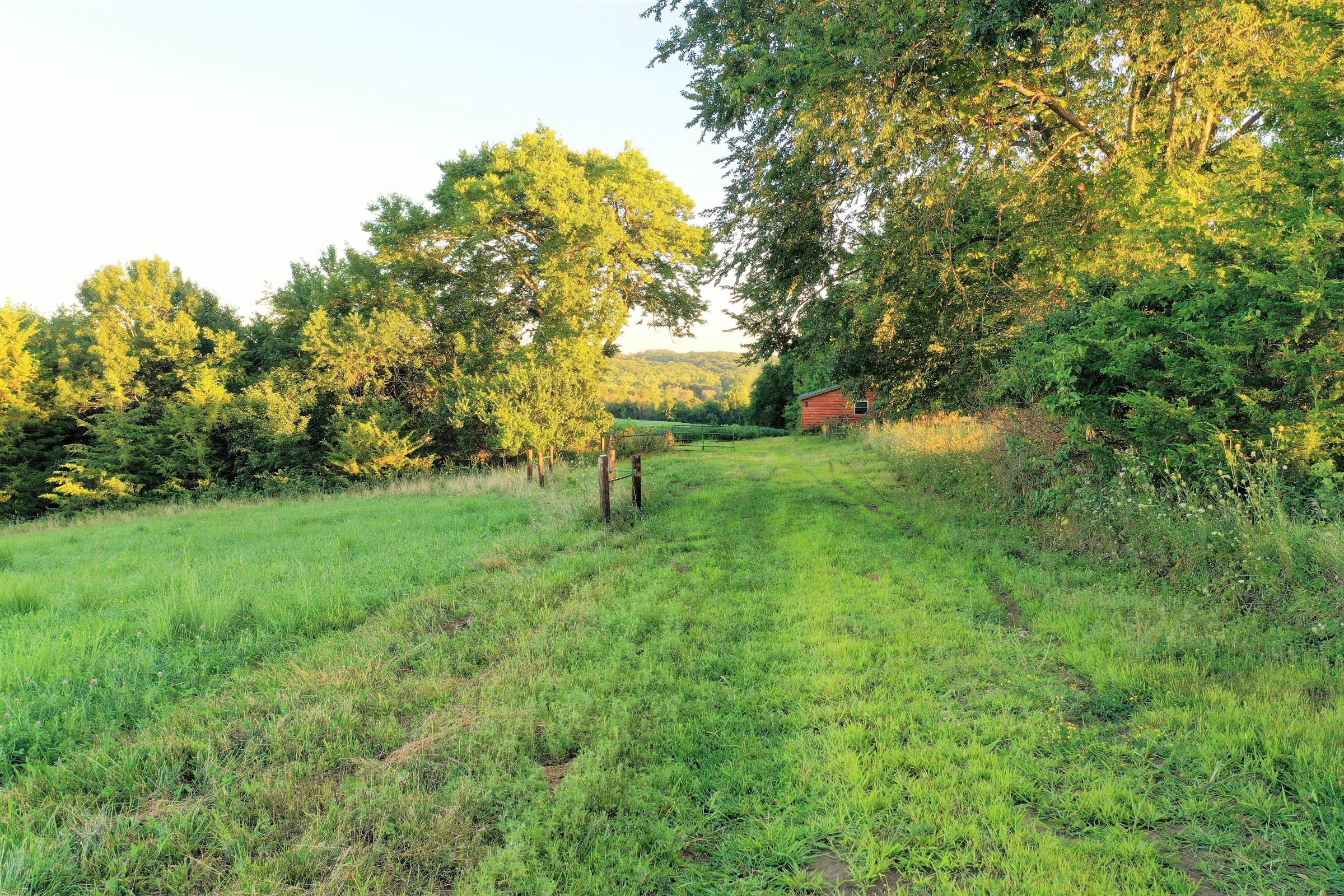 land-clarke-county-iowa-325-acres-listing-number-15416-3-2021-03-18-162754.JPG
