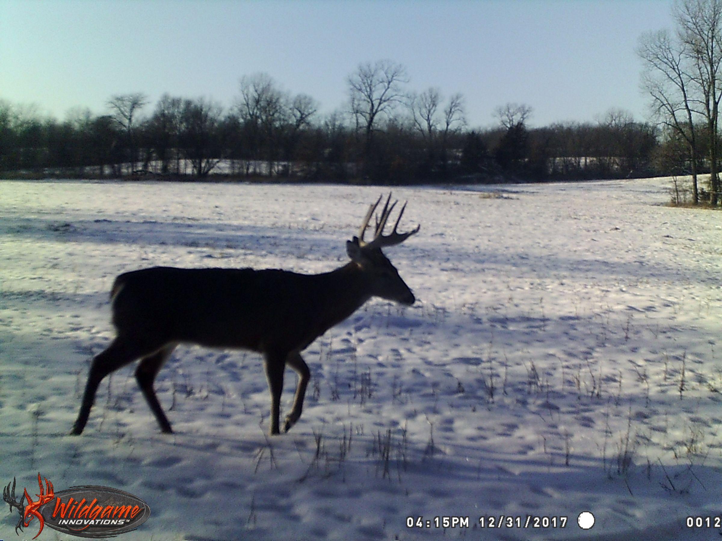 land-clarke-county-iowa-325-acres-listing-number-15416-3-2021-03-19-165613.JPG
