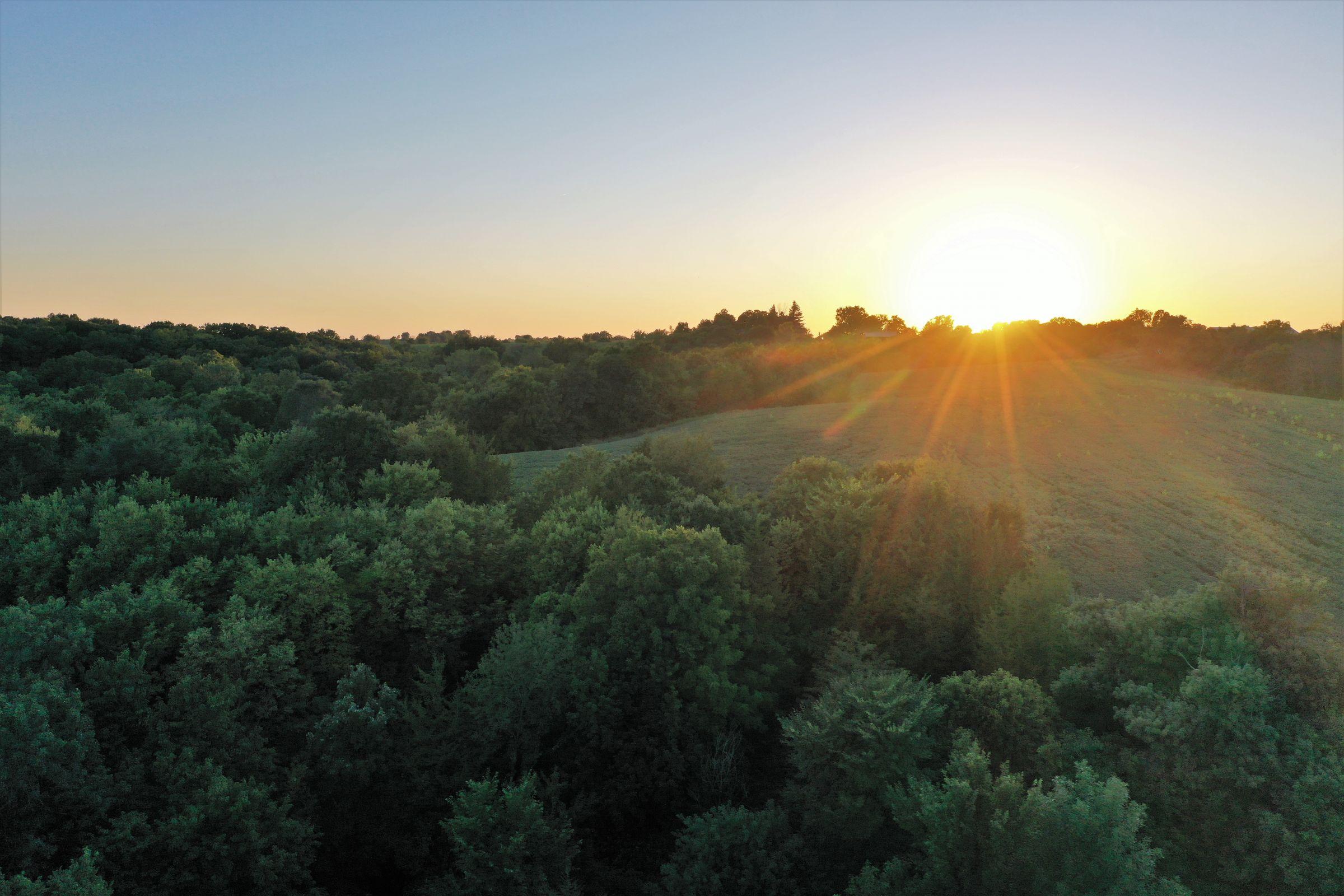 land-clarke-county-iowa-325-acres-listing-number-15416-4-2021-03-18-163317.JPG