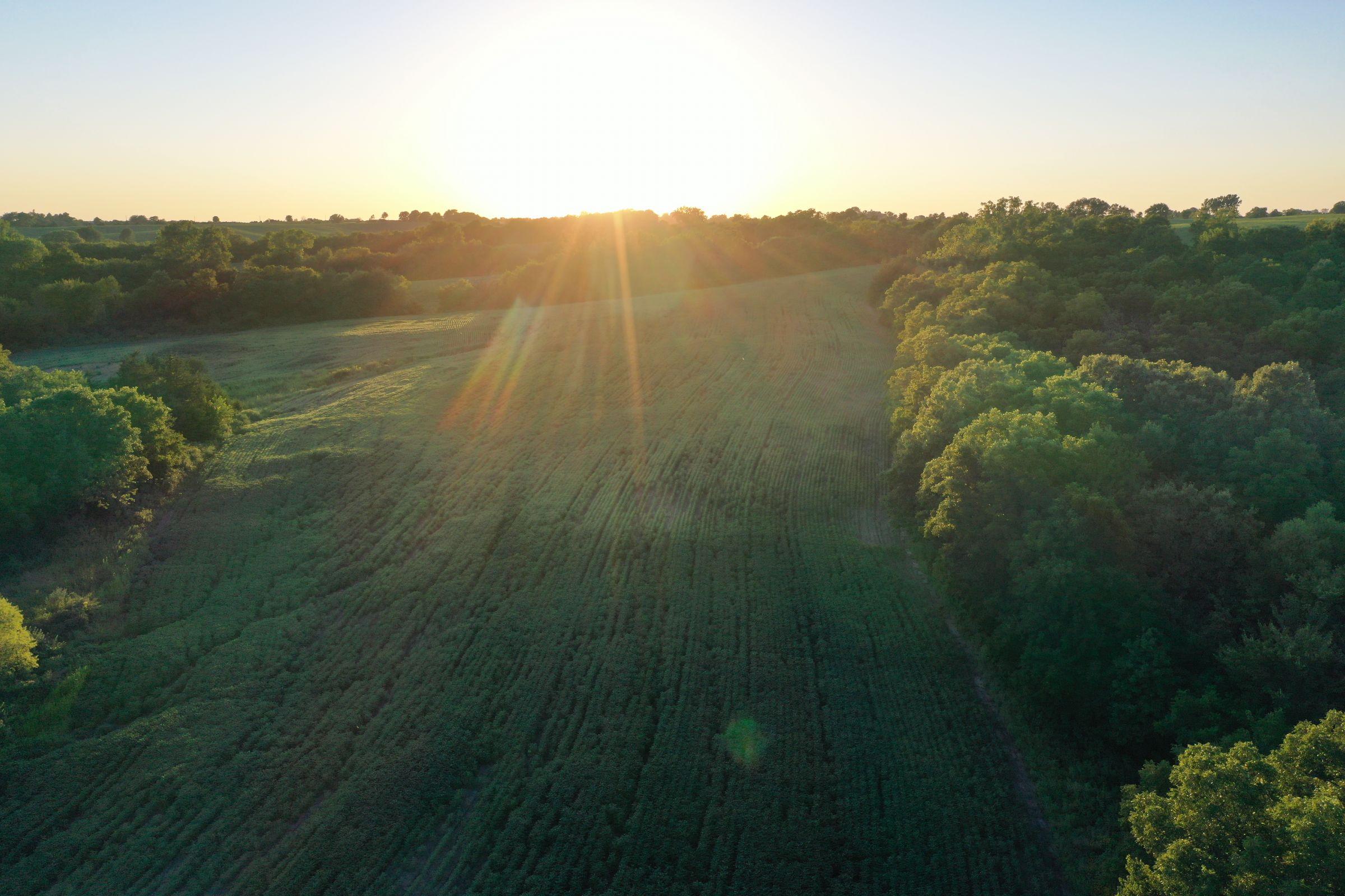 land-clarke-county-iowa-325-acres-listing-number-15416-9-2021-03-18-162805.JPG