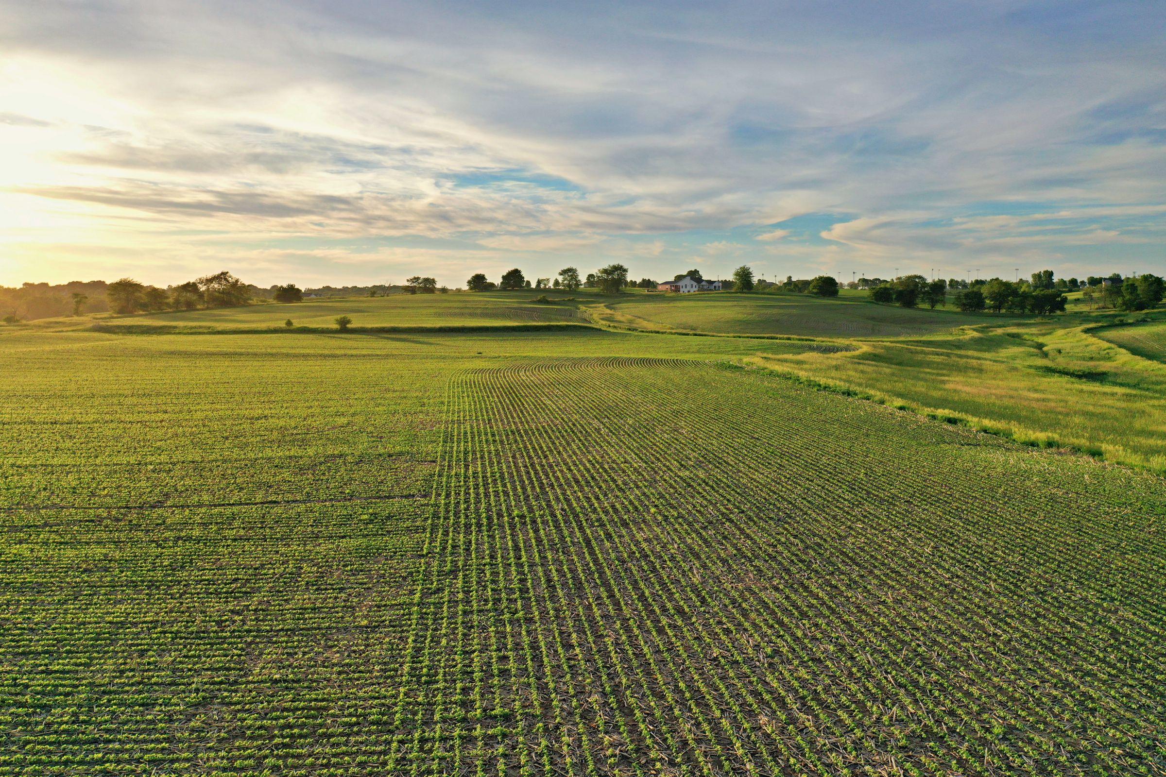 land-warren-county-iowa-20-acres-listing-number-15425-3-2021-03-25-193608.JPG