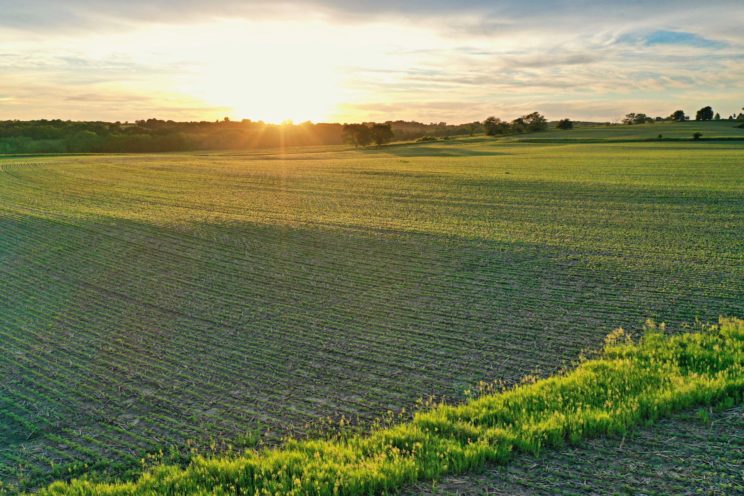 land-warren-county-iowa-20-acres-listing-number-15426-2-2021-03-24-190159.JPG