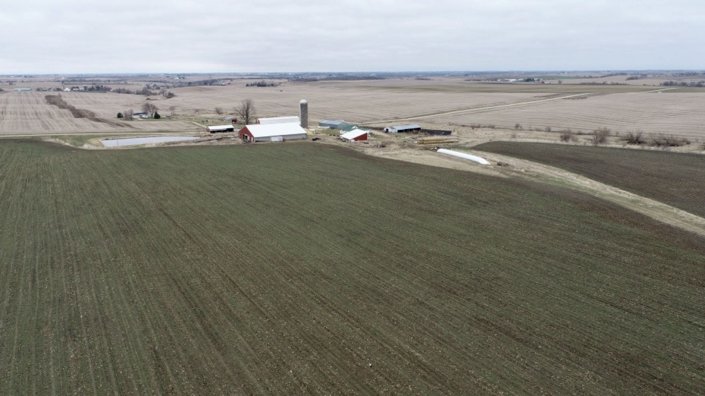 land-lafayette-county-wisconsin-47-acres-listing-number-15428-16-2021-03-25-172104.jpg