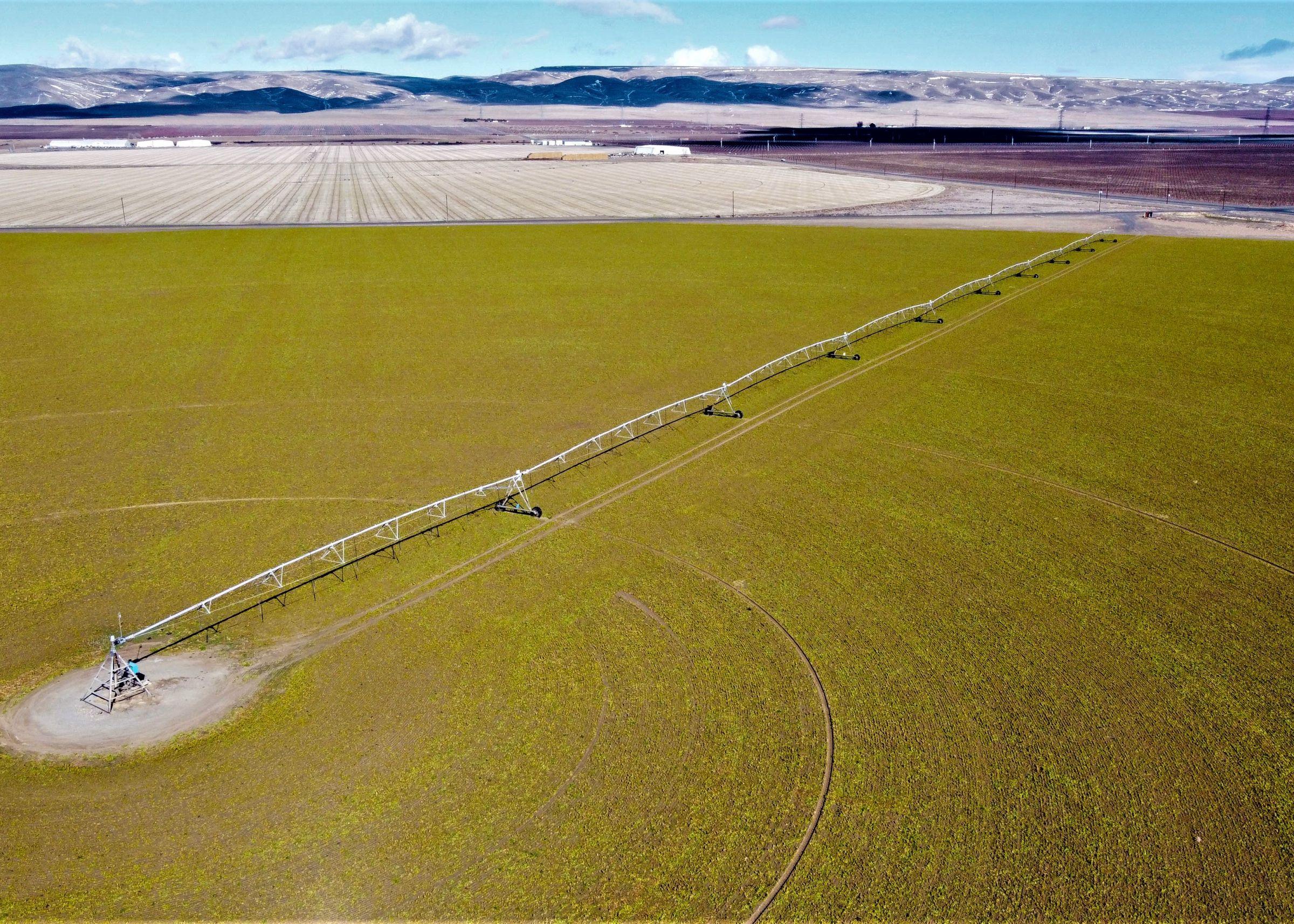Mattawa Irrigated Farm Pic 1