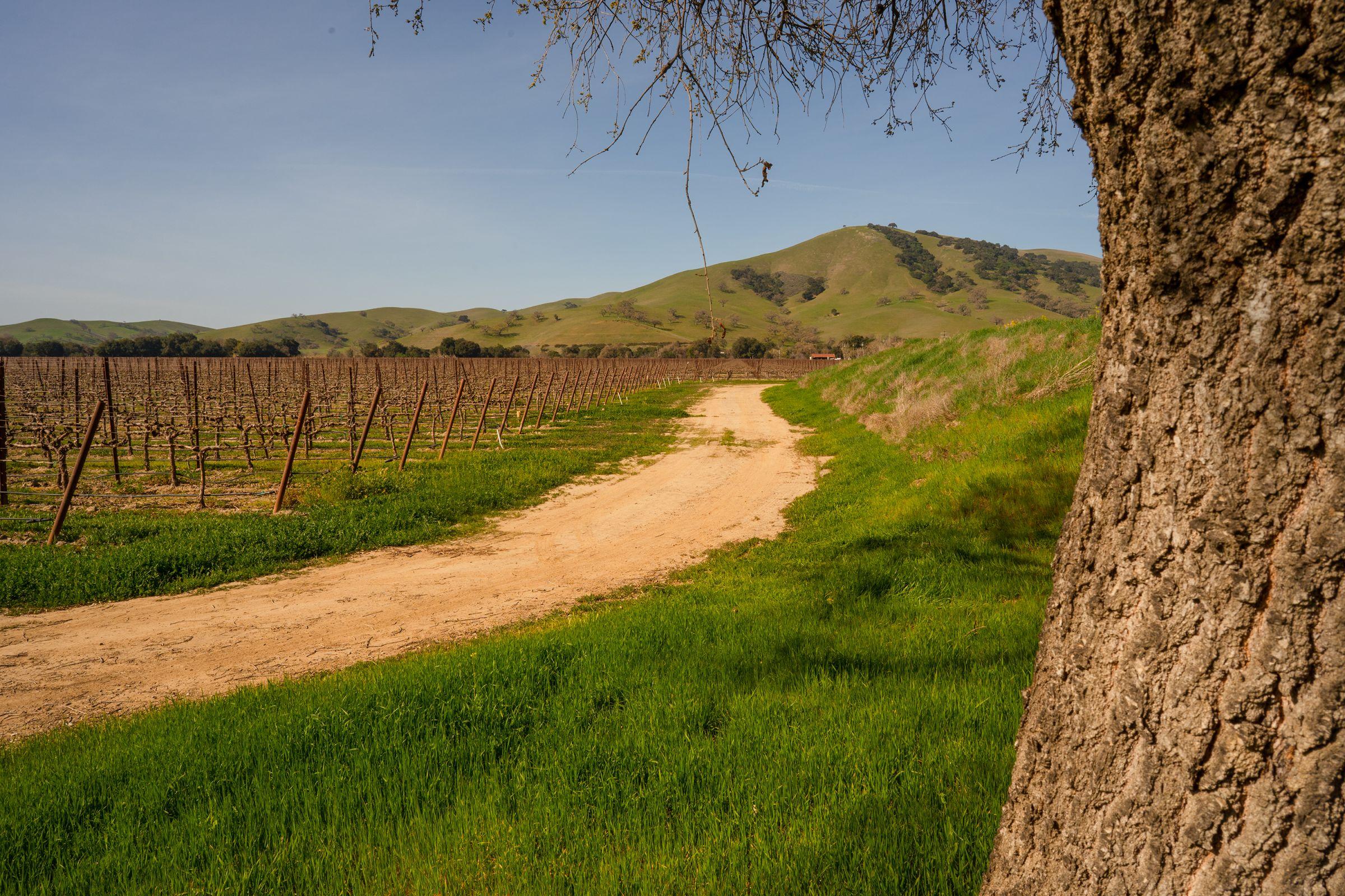 santa-clara-county-california-497-acres-listing-number-15435-2-2021-03-30-213027.jpg