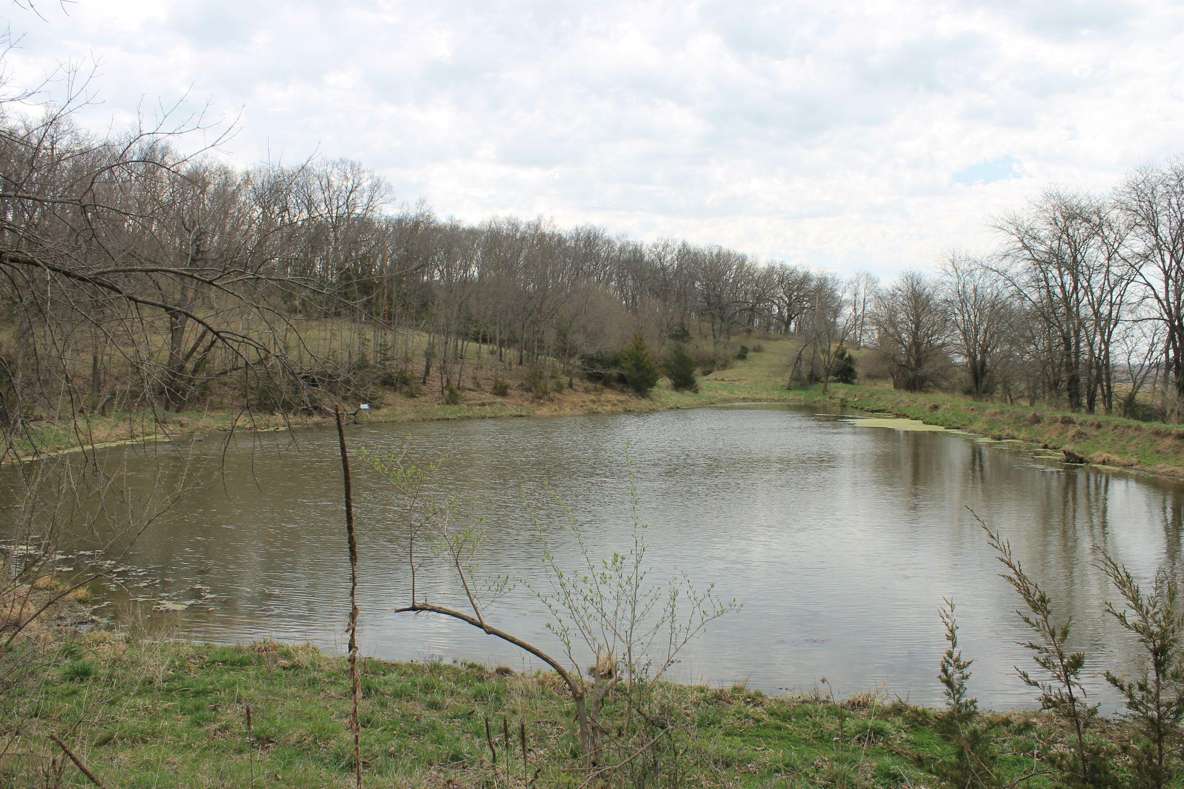 land-warren-county-iowa-186-acres-listing-number-15447-1-2021-04-09-154343.JPG