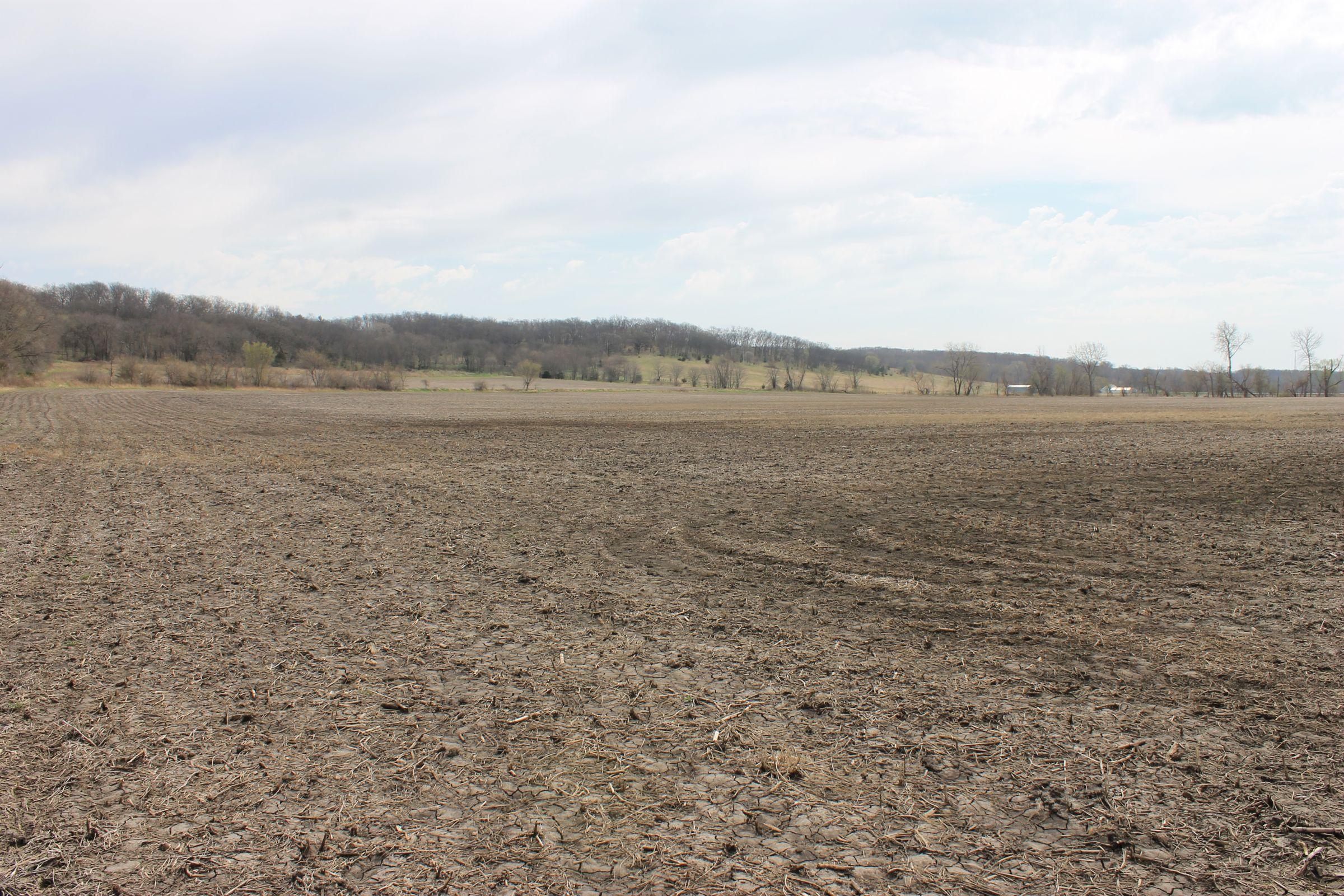 land-warren-county-iowa-186-acres-listing-number-15447-11-2021-04-09-154645.JPG