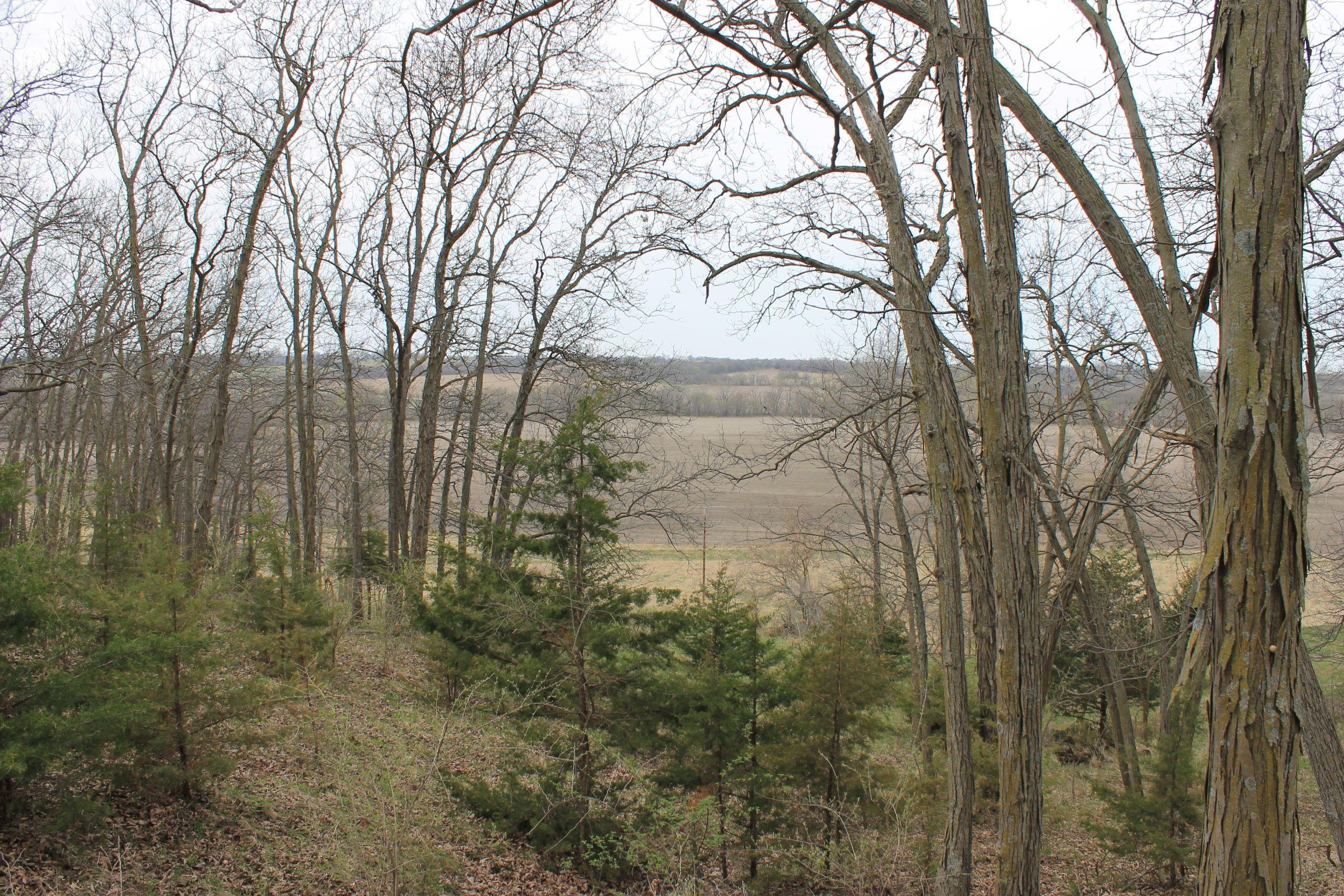 land-warren-county-iowa-186-acres-listing-number-15447-4-2021-04-09-154347.JPG