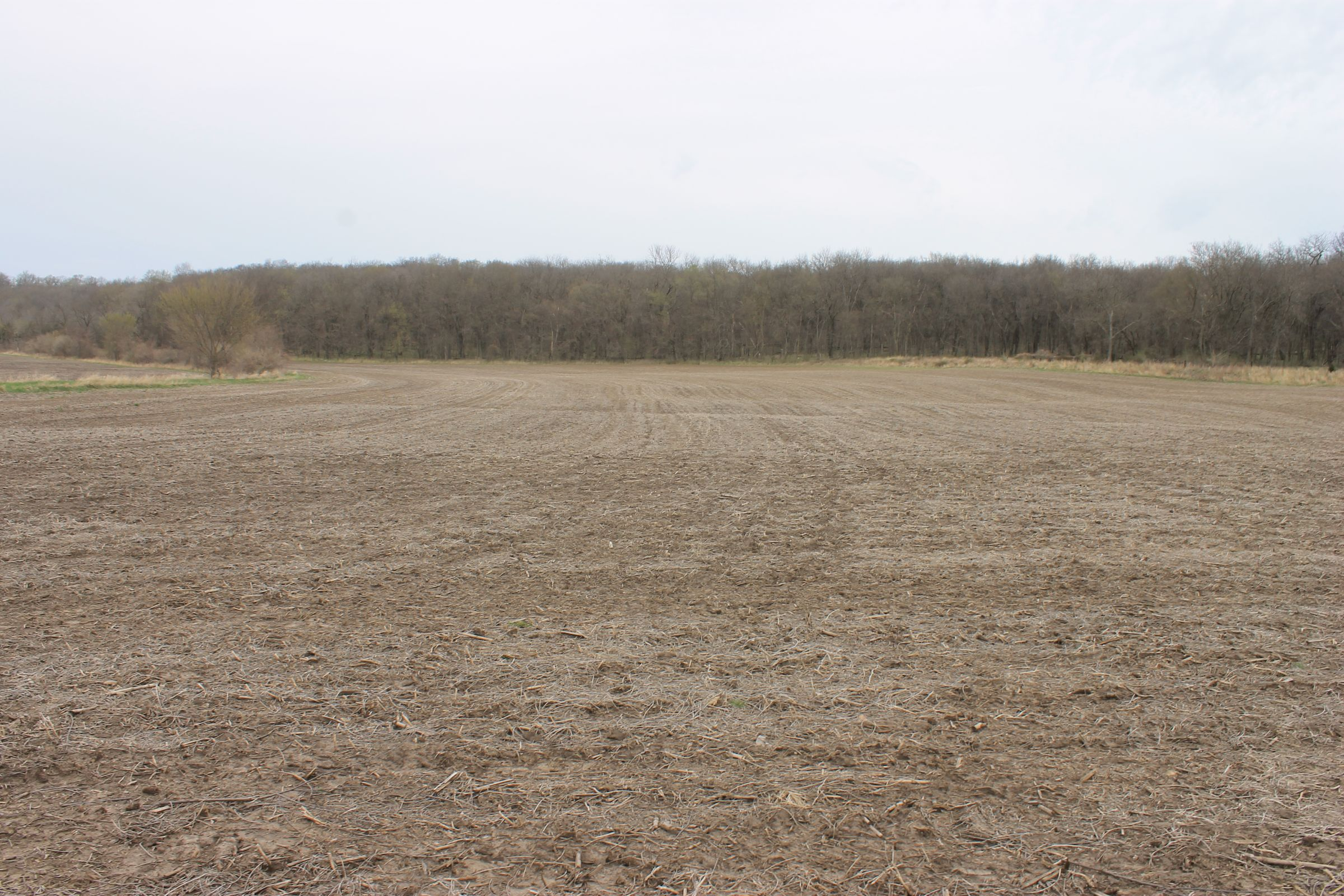 land-warren-county-iowa-186-acres-listing-number-15447-7-2021-04-09-154640.JPG