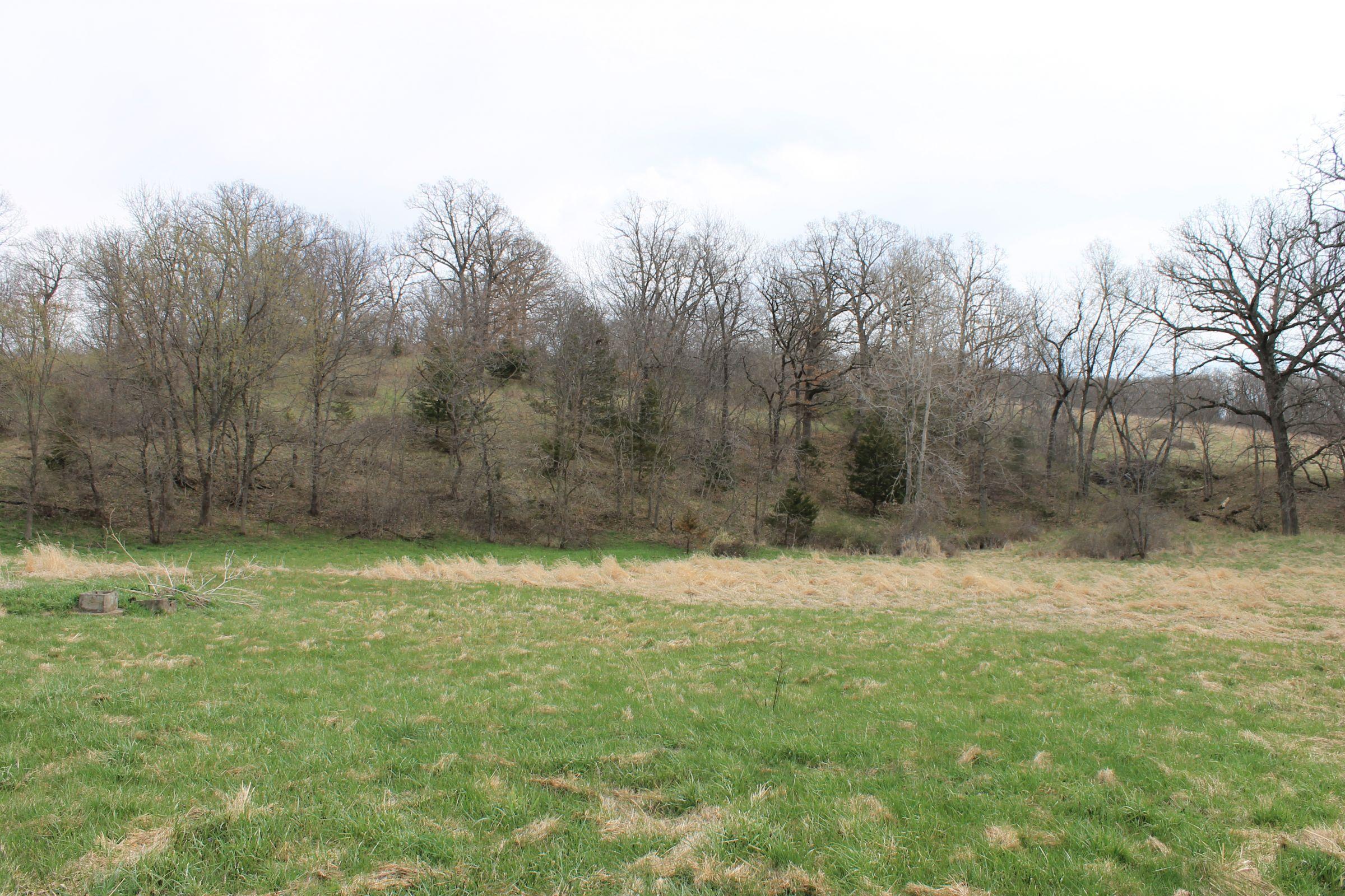 land-warren-county-iowa-71-acres-listing-number-15449-2-2021-04-09-150745.JPG