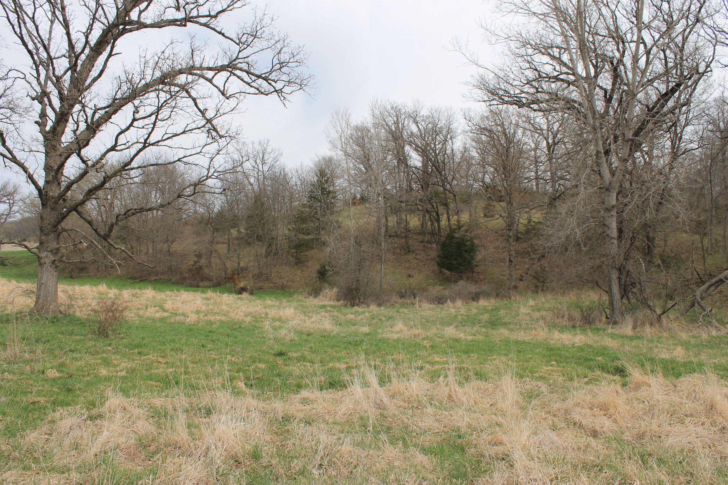 land-warren-county-iowa-71-acres-listing-number-15449-3-2021-04-09-150746.JPG