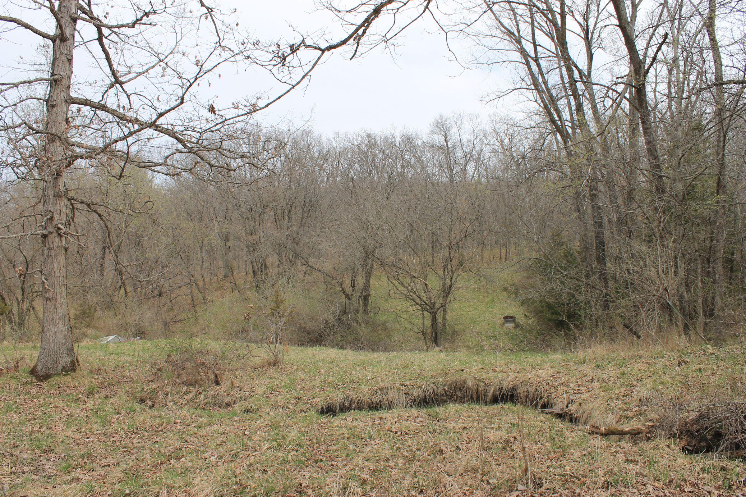 land-warren-county-iowa-71-acres-listing-number-15449-4-2021-04-09-150748.JPG