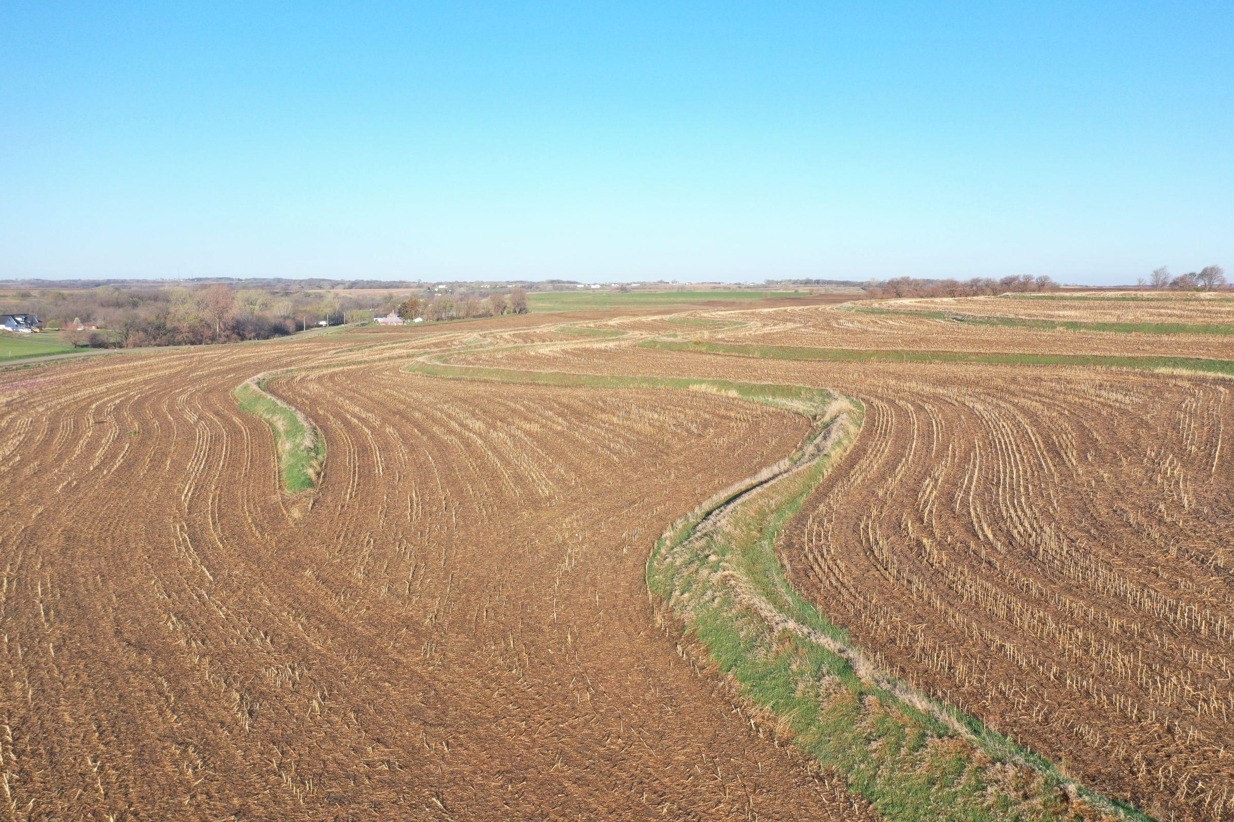 land-mills-county-iowa-284-acres-listing-number-15452-1-2021-04-09-181106.JPG