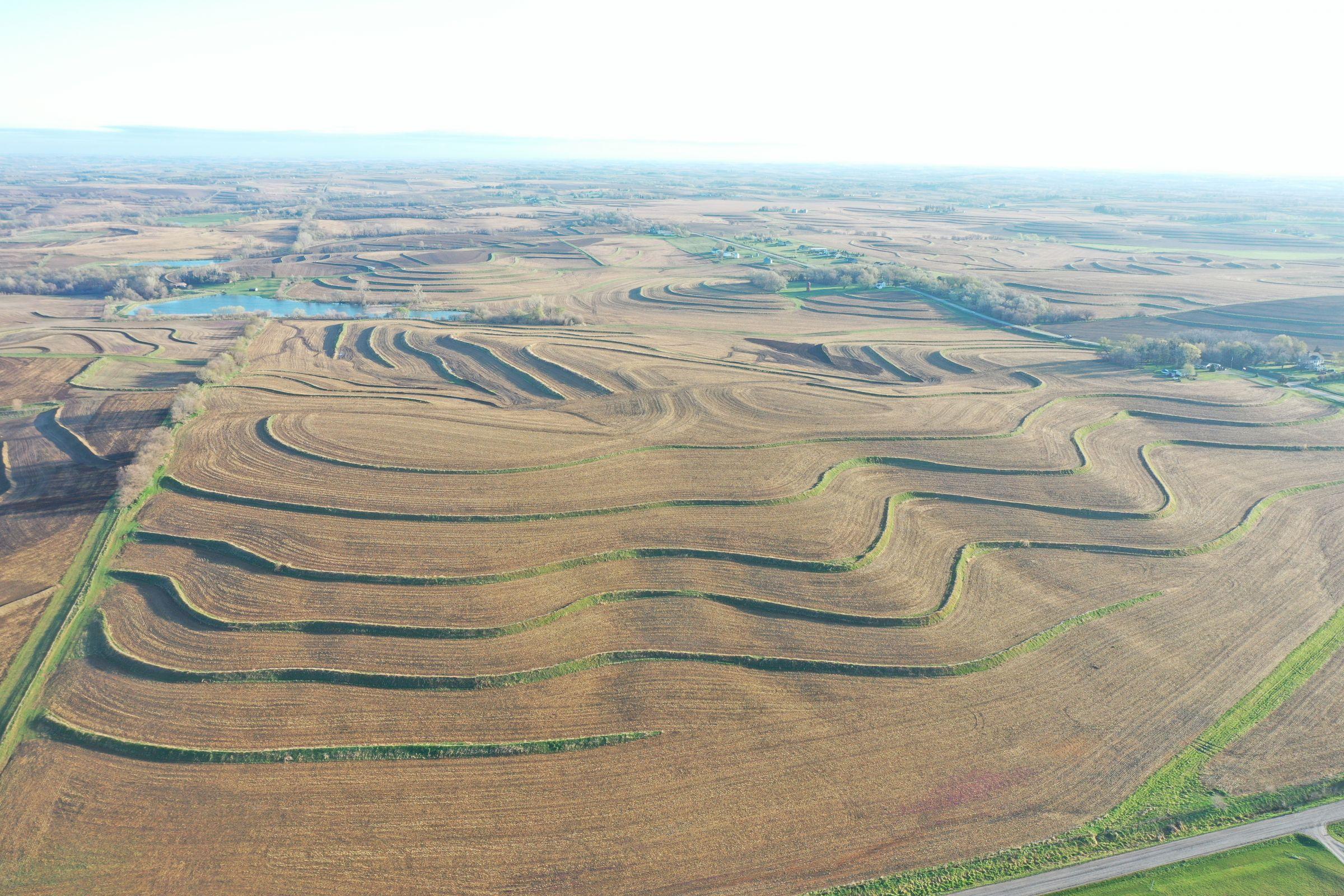 land-mills-county-iowa-284-acres-listing-number-15452-2-2021-04-09-180530.JPG