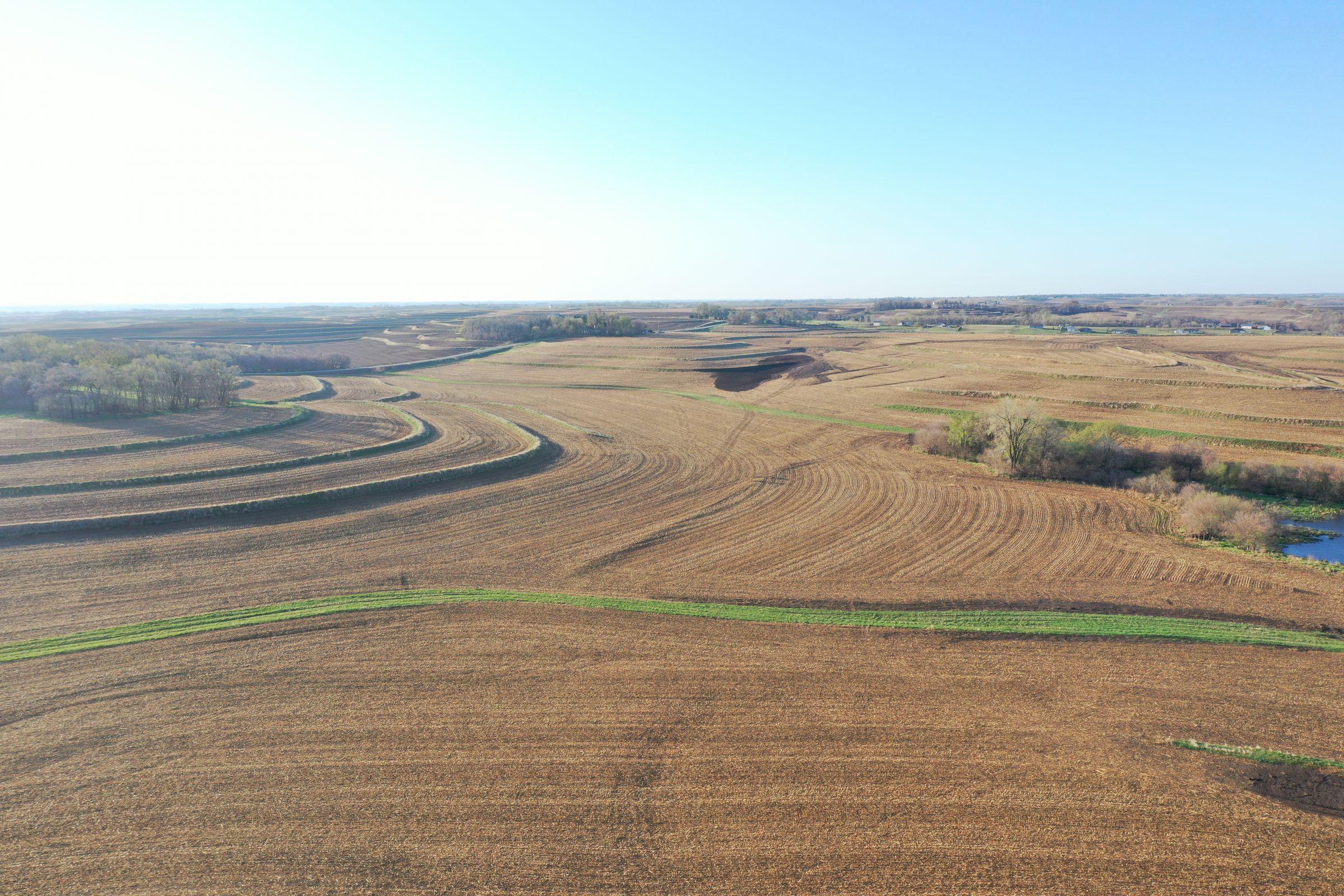 land-mills-county-iowa-284-acres-listing-number-15452-2-2021-04-09-180720.JPG