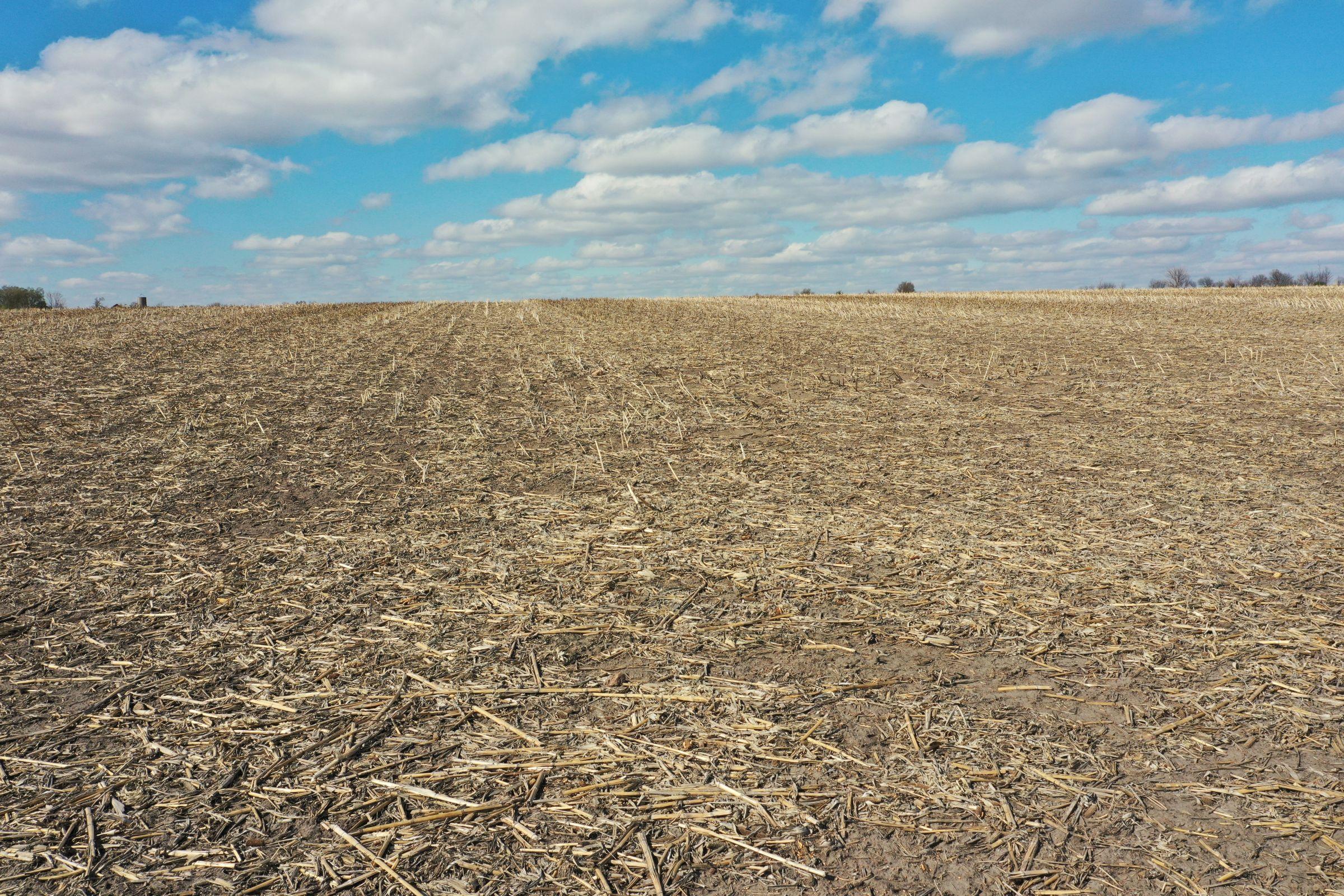 floyd-county-iowa-80-acres-listing-number-15485-3-2021-04-25-212714.JPG