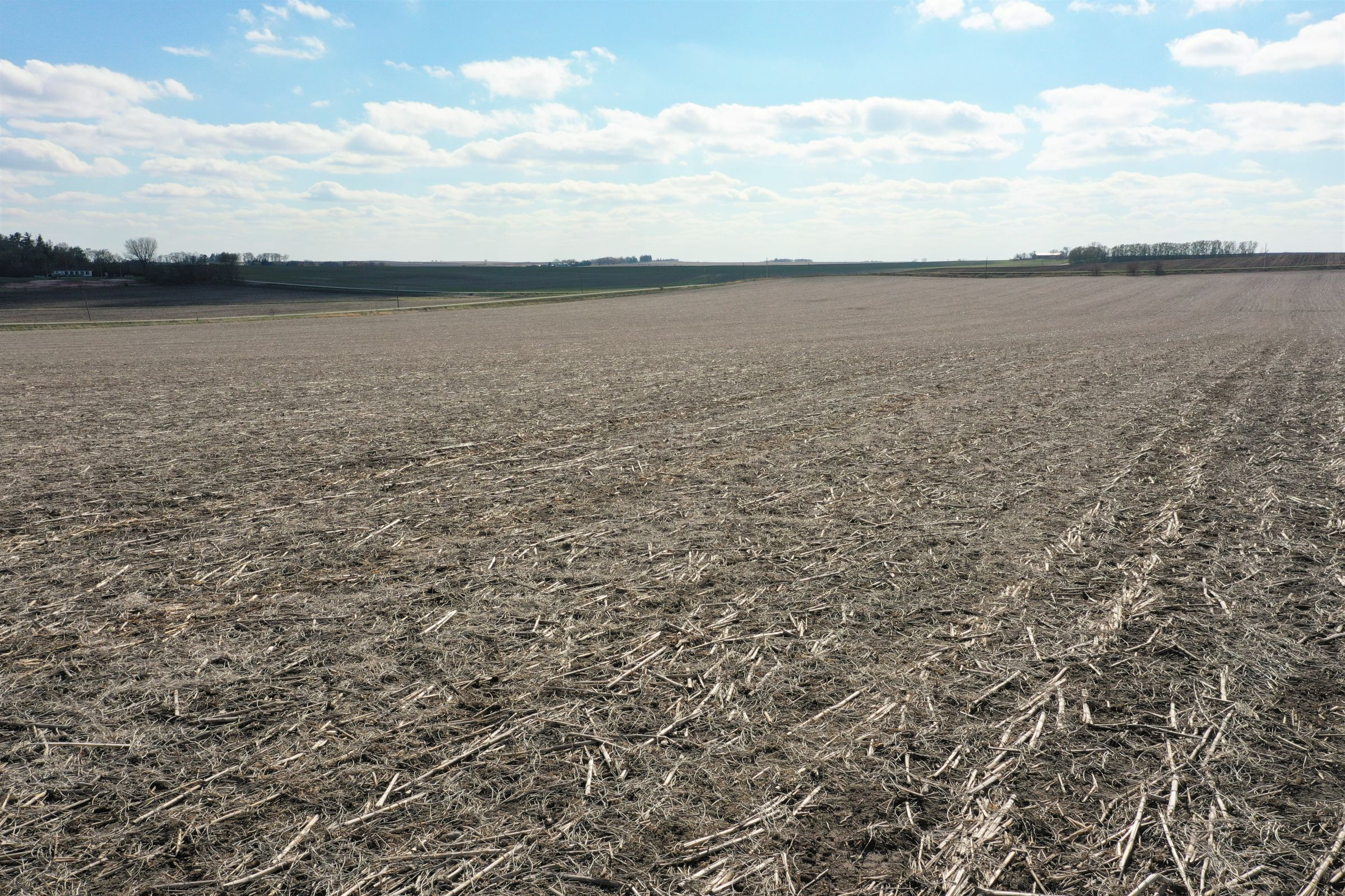 floyd-county-iowa-80-acres-listing-number-15486-2-2021-04-26-003052.JPG