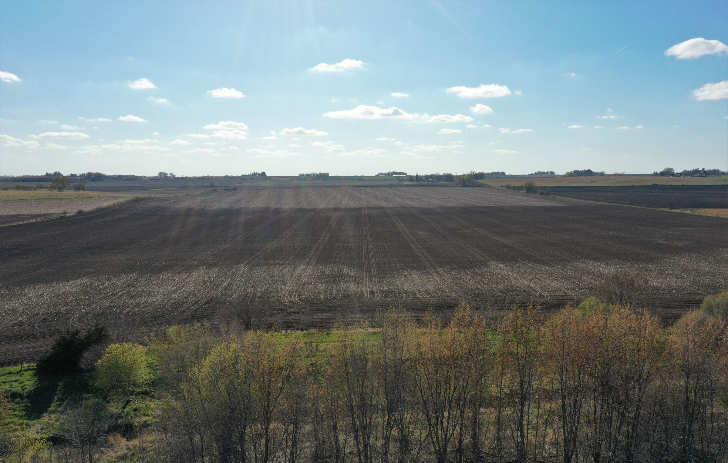 floyd-county-iowa-80-acres-listing-number-15487-2-2021-04-26-011846.JPG