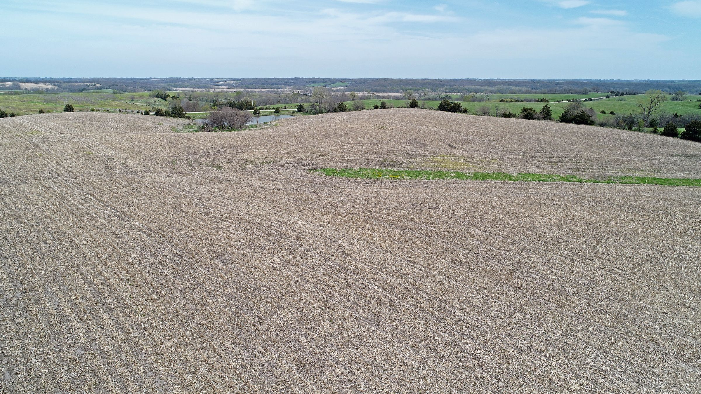 land-decatur-county-iowa-39-acres-listing-number-15495-0-2021-04-27-215247.JPG