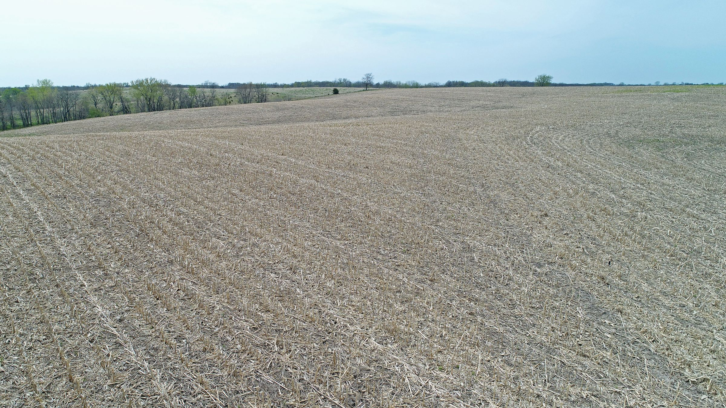 land-decatur-county-iowa-39-acres-listing-number-15495-0-2021-04-27-215419.JPG