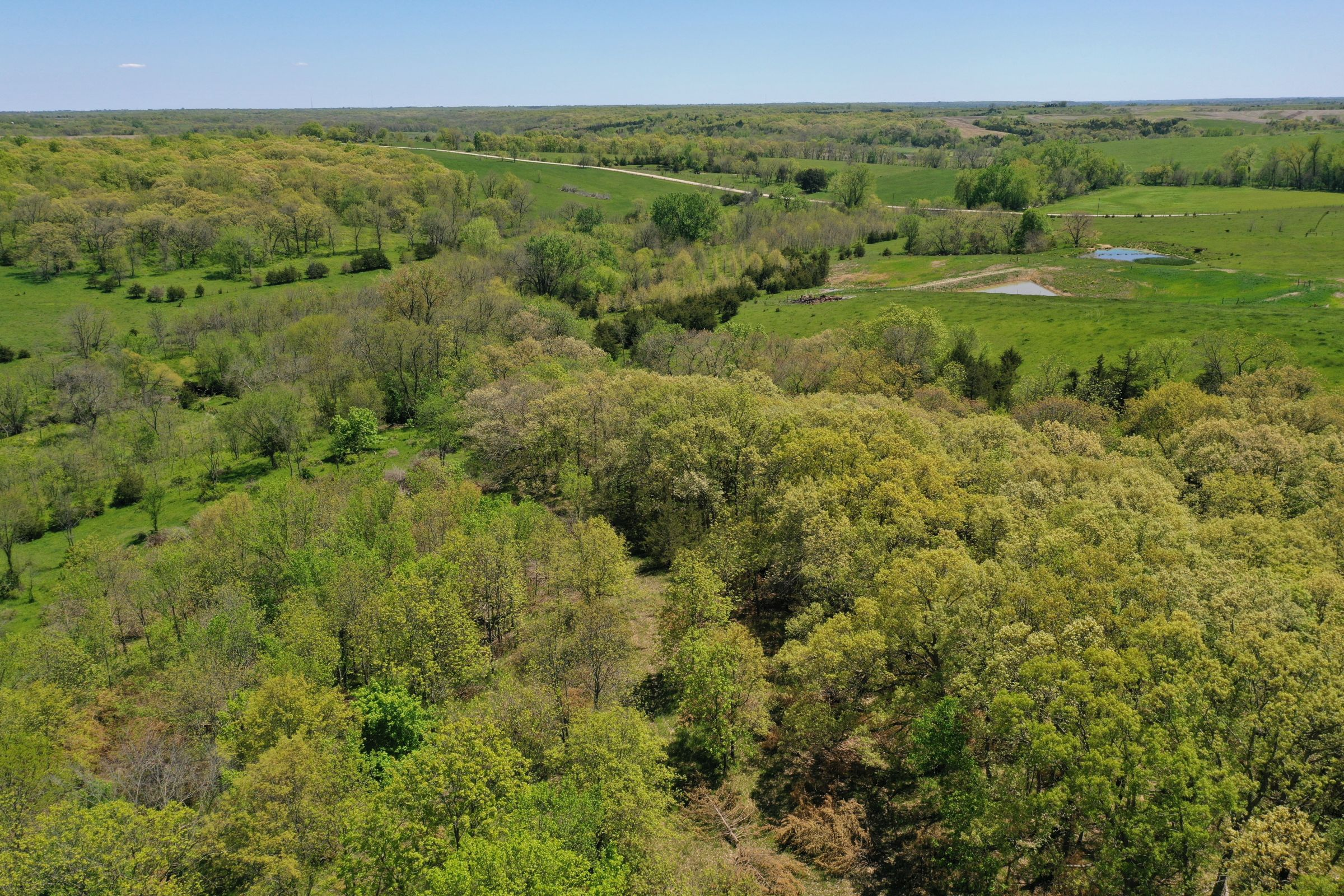 land-decatur-county-iowa-99-acres-listing-number-15525-0-2021-05-14-174315.JPG