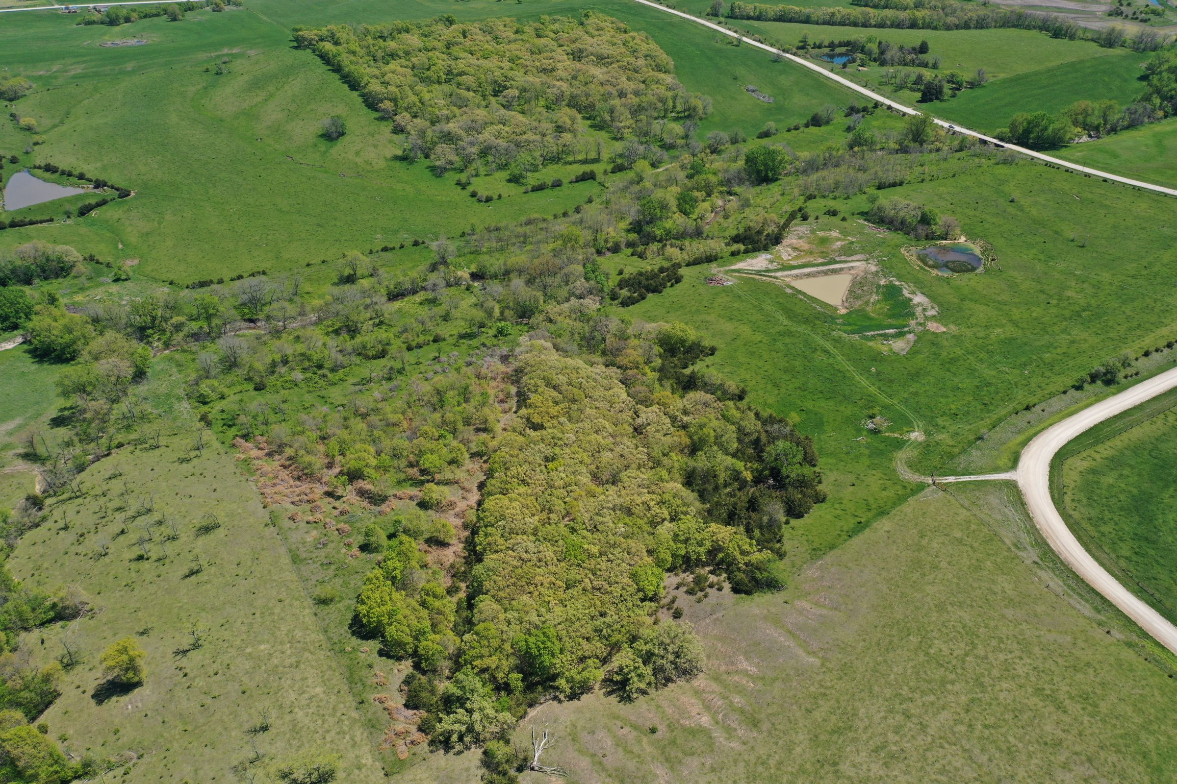 land-decatur-county-iowa-99-acres-listing-number-15525-0-2021-05-14-174538.JPG